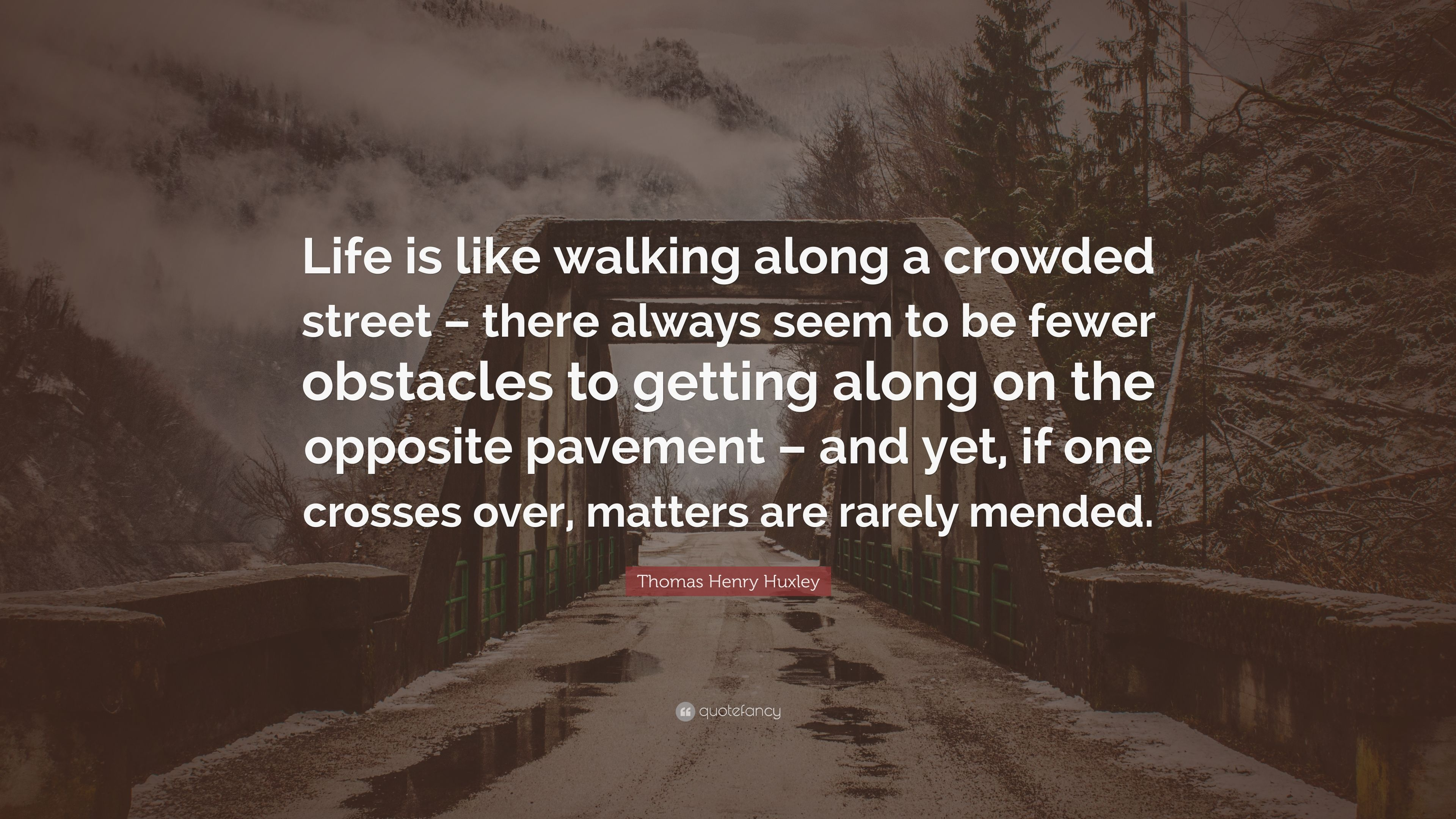Thomas Henry Huxley Quote Life Is Like Walking Along A Crowded