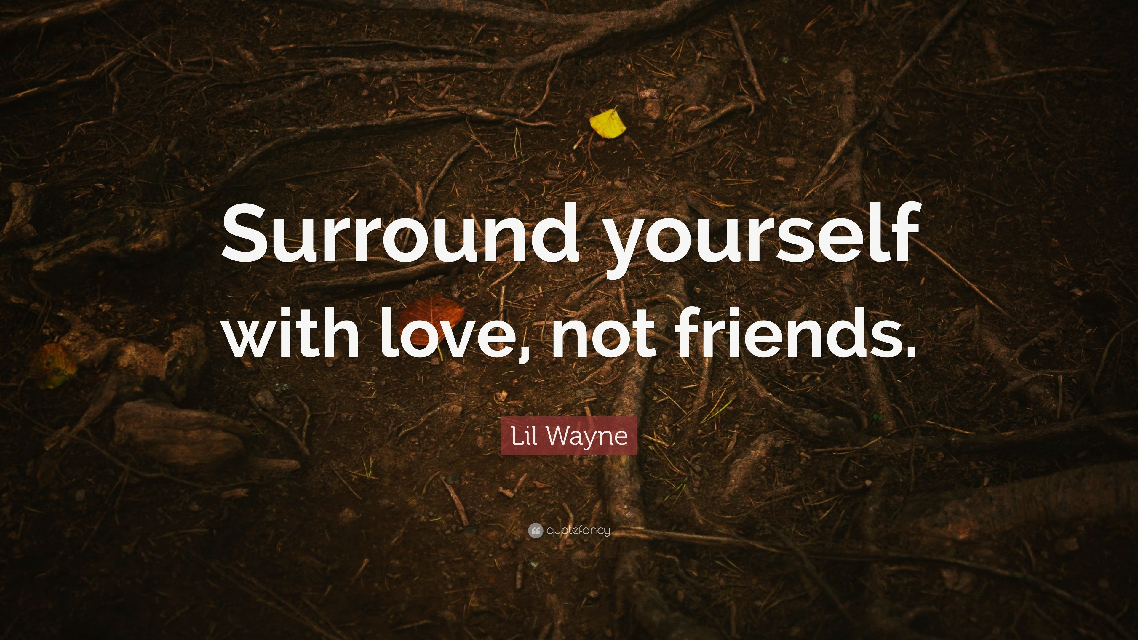 Enjoyable Lil Wayne Quote Surround Yourself With Love Not Friends 7 Funny Birthday Cards Online Inifodamsfinfo
