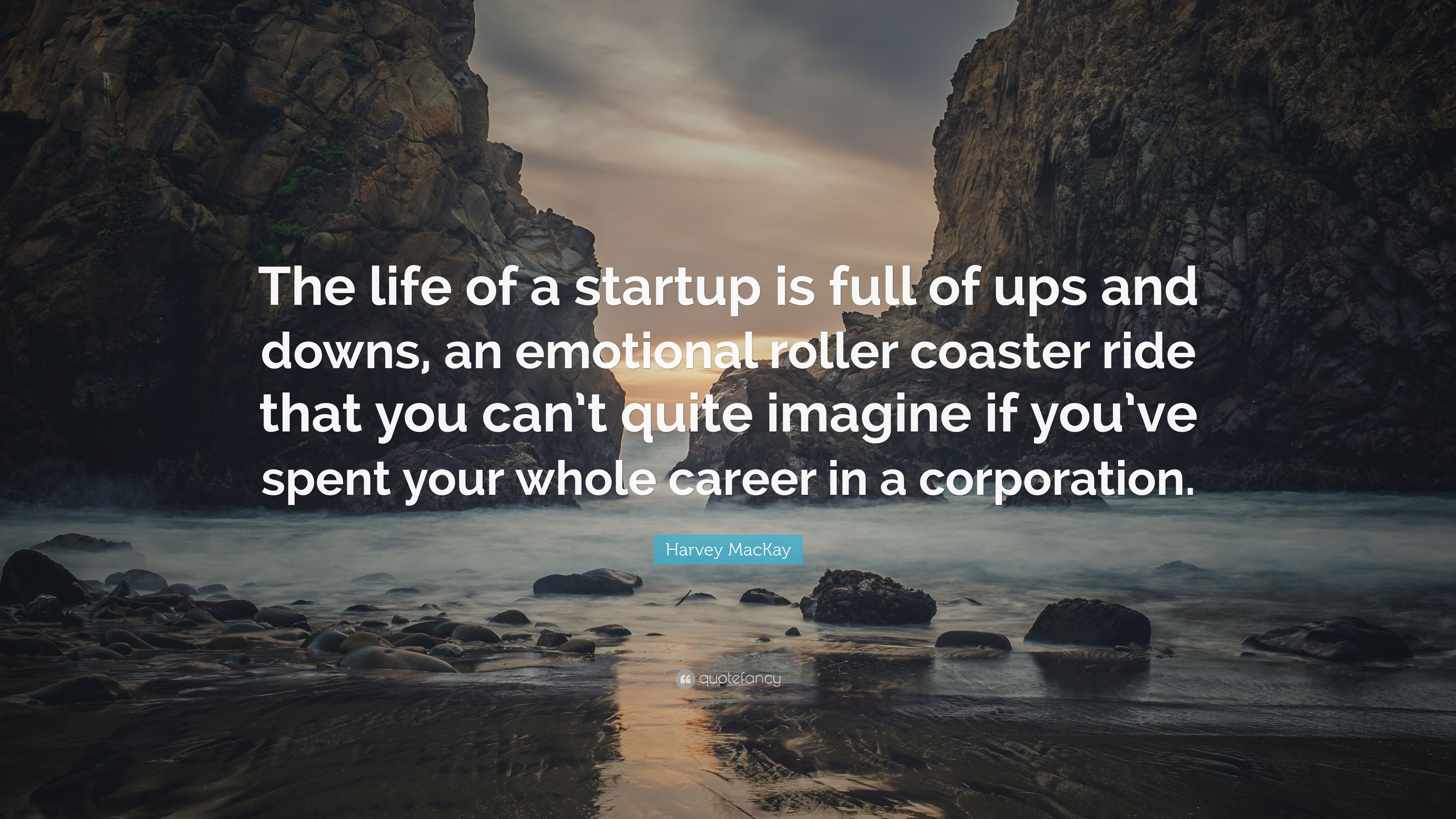 Harvey Mackay Quote The Life Of A Startup Is Full Of Ups And Downs