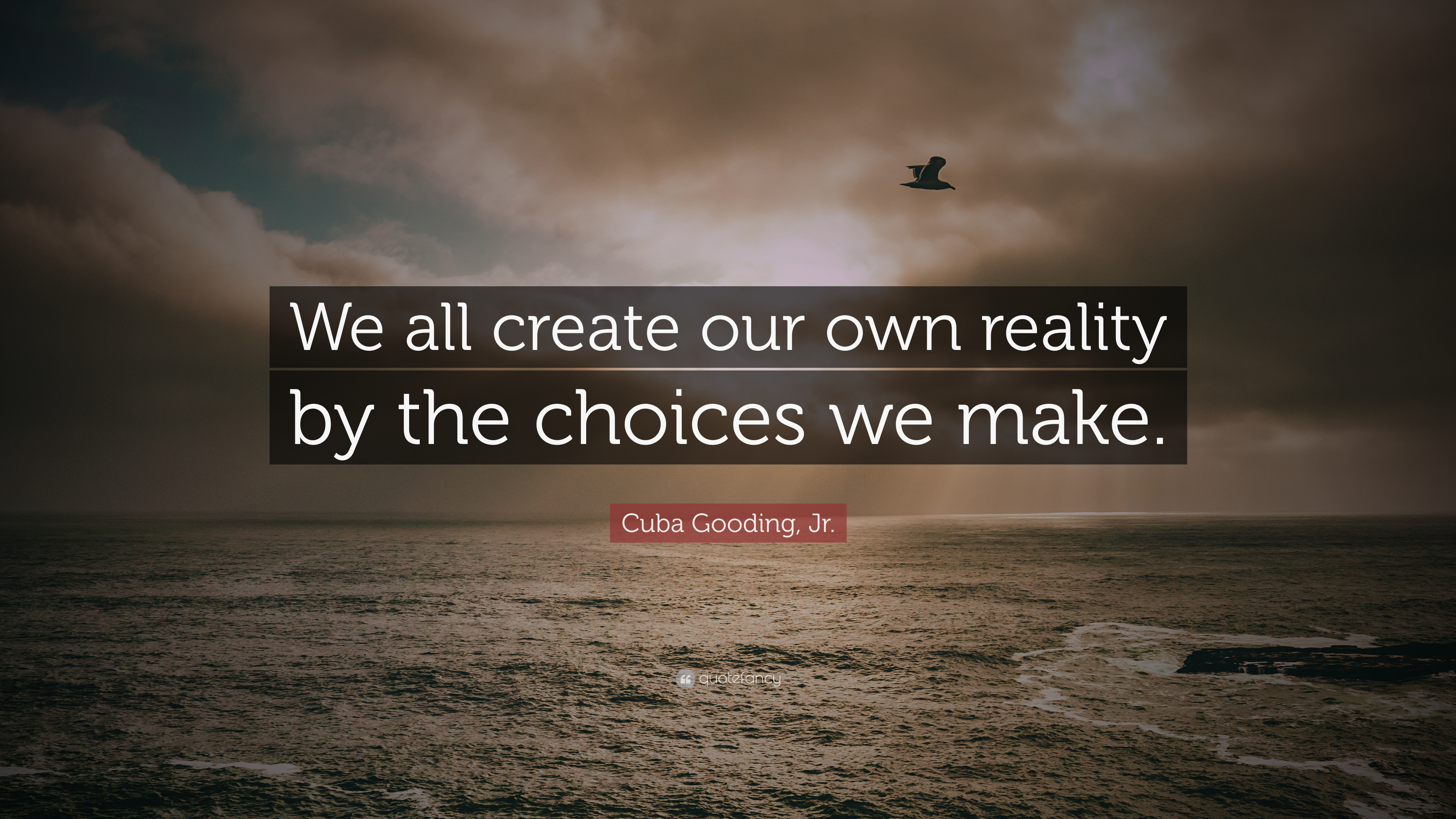 Cuba Gooding Jr Quote We All Create Our Own Reality By The