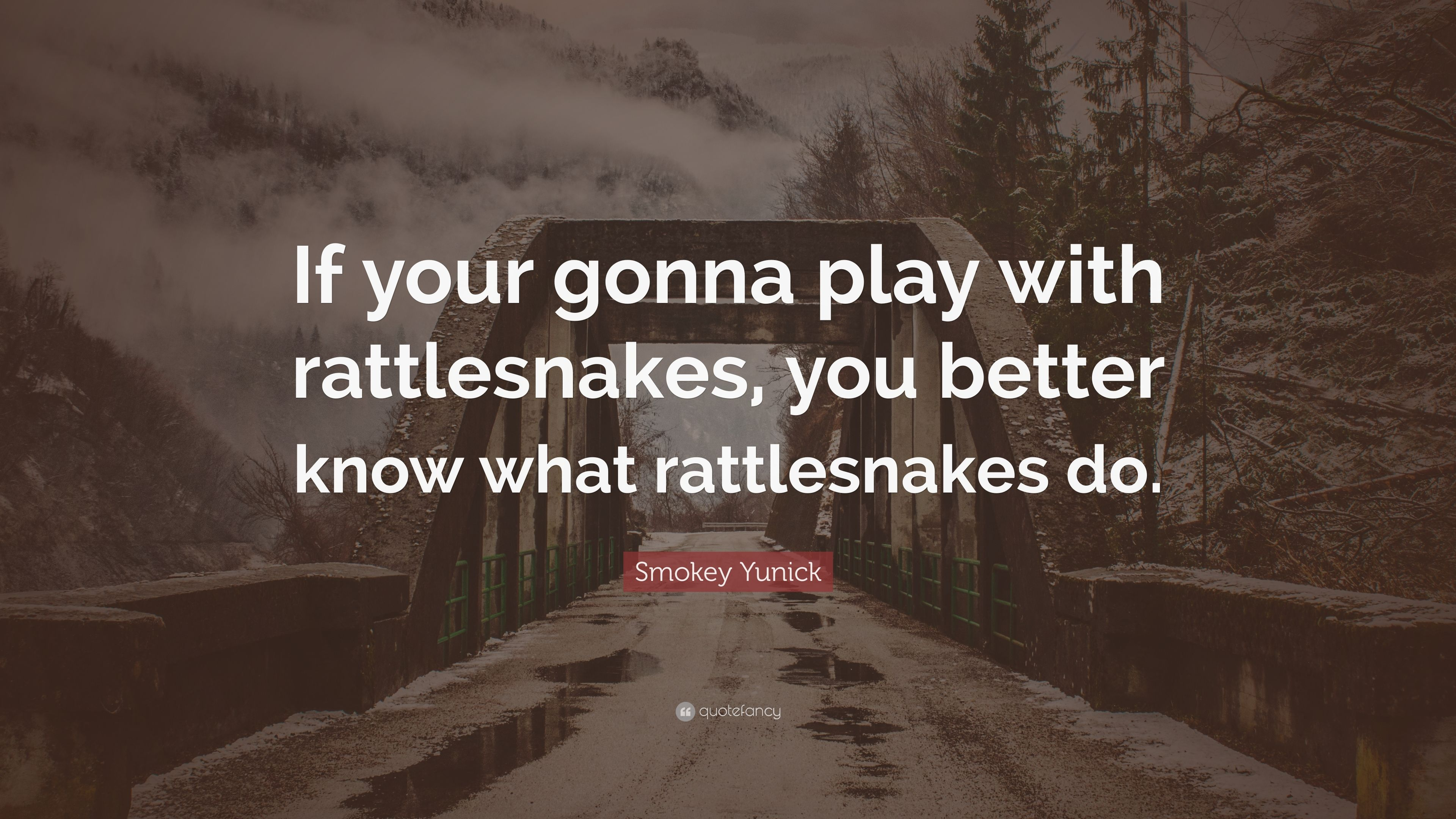 Smokey Yunick Quote If Your Gonna Play With Rattlesnakes You