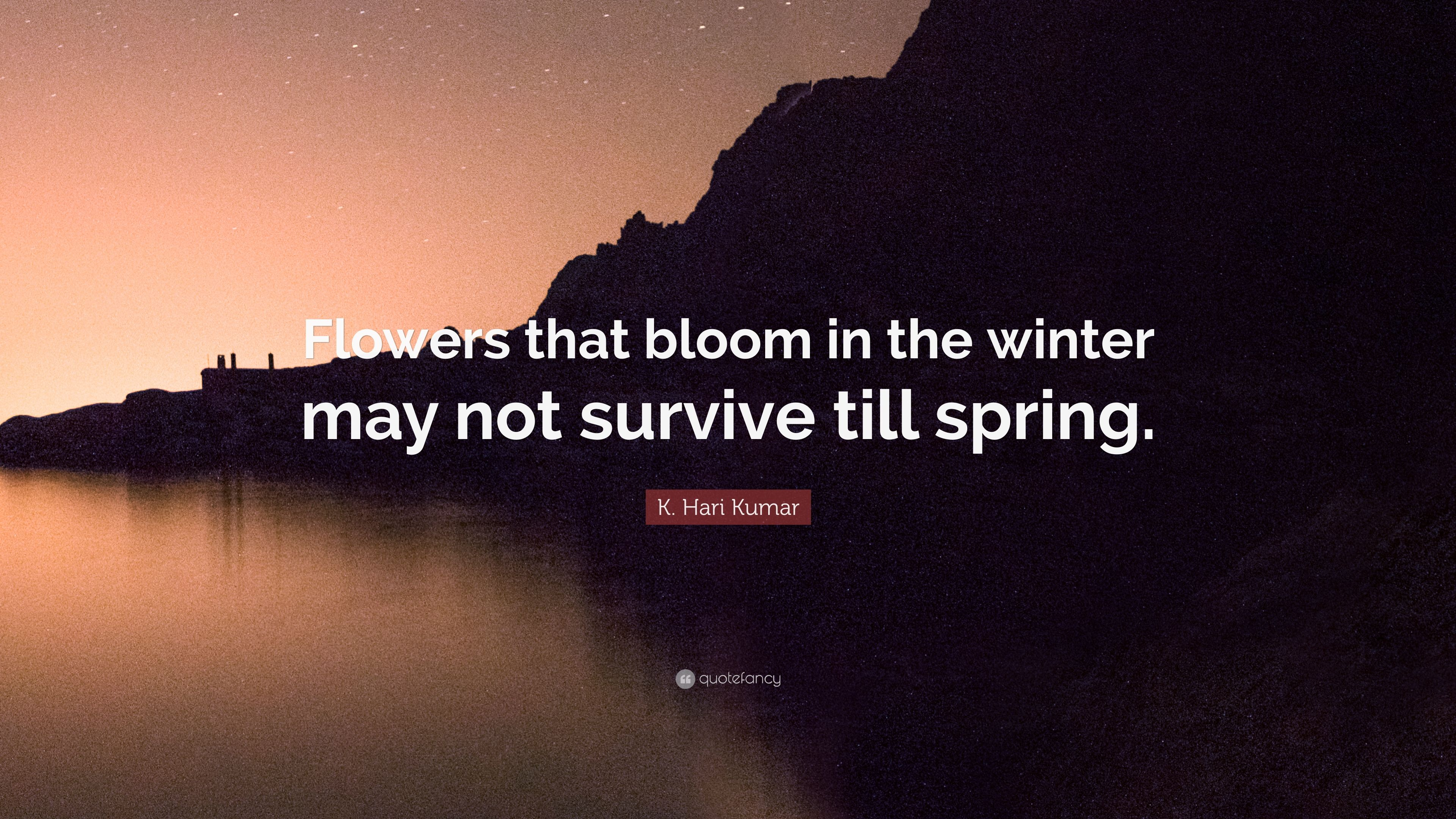 """k hari kumar quote """"flowers that bloom in the winter not"""