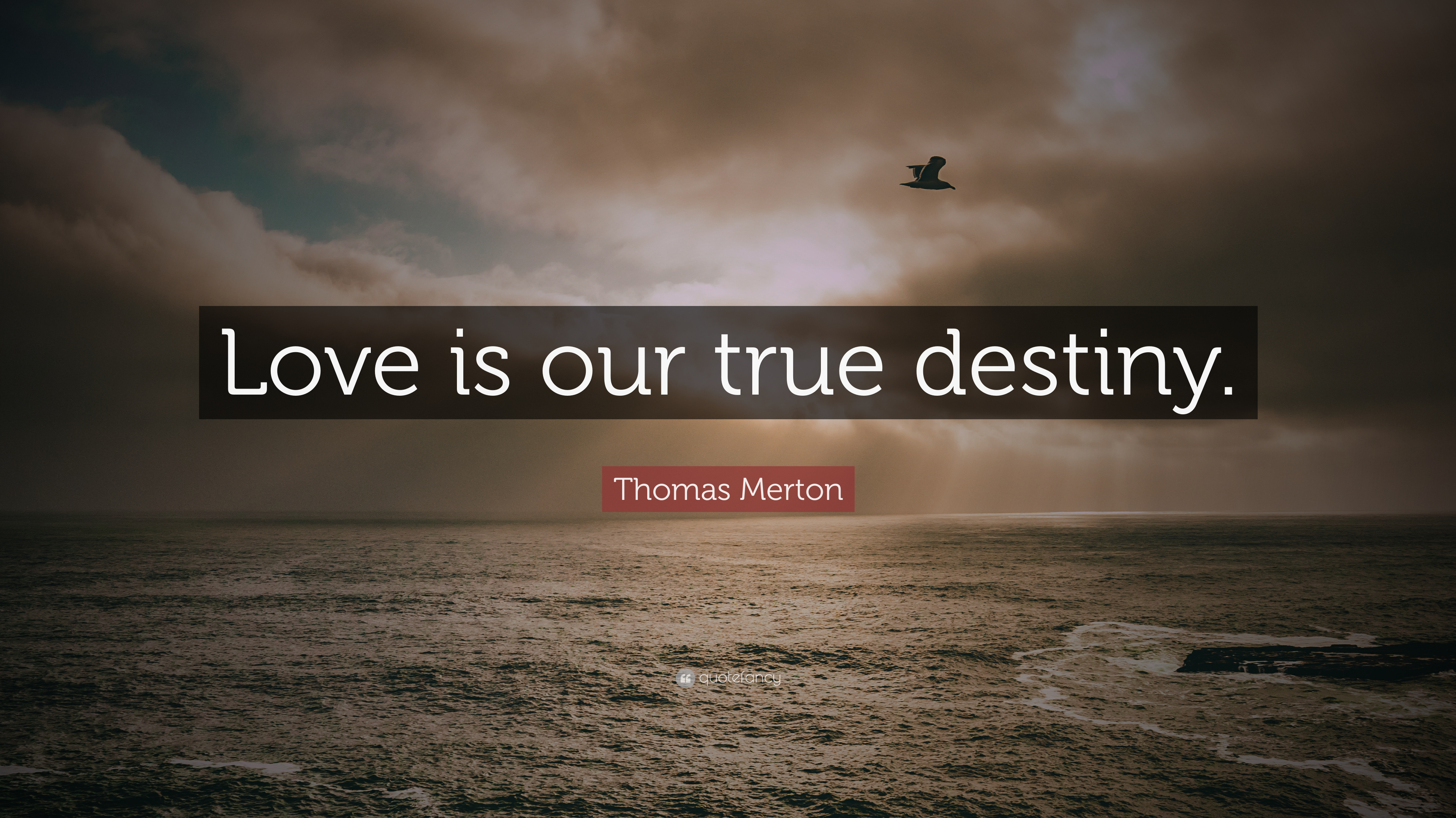 Thomas Merton Quote Love Is Our True Destiny 7 Wallpapers