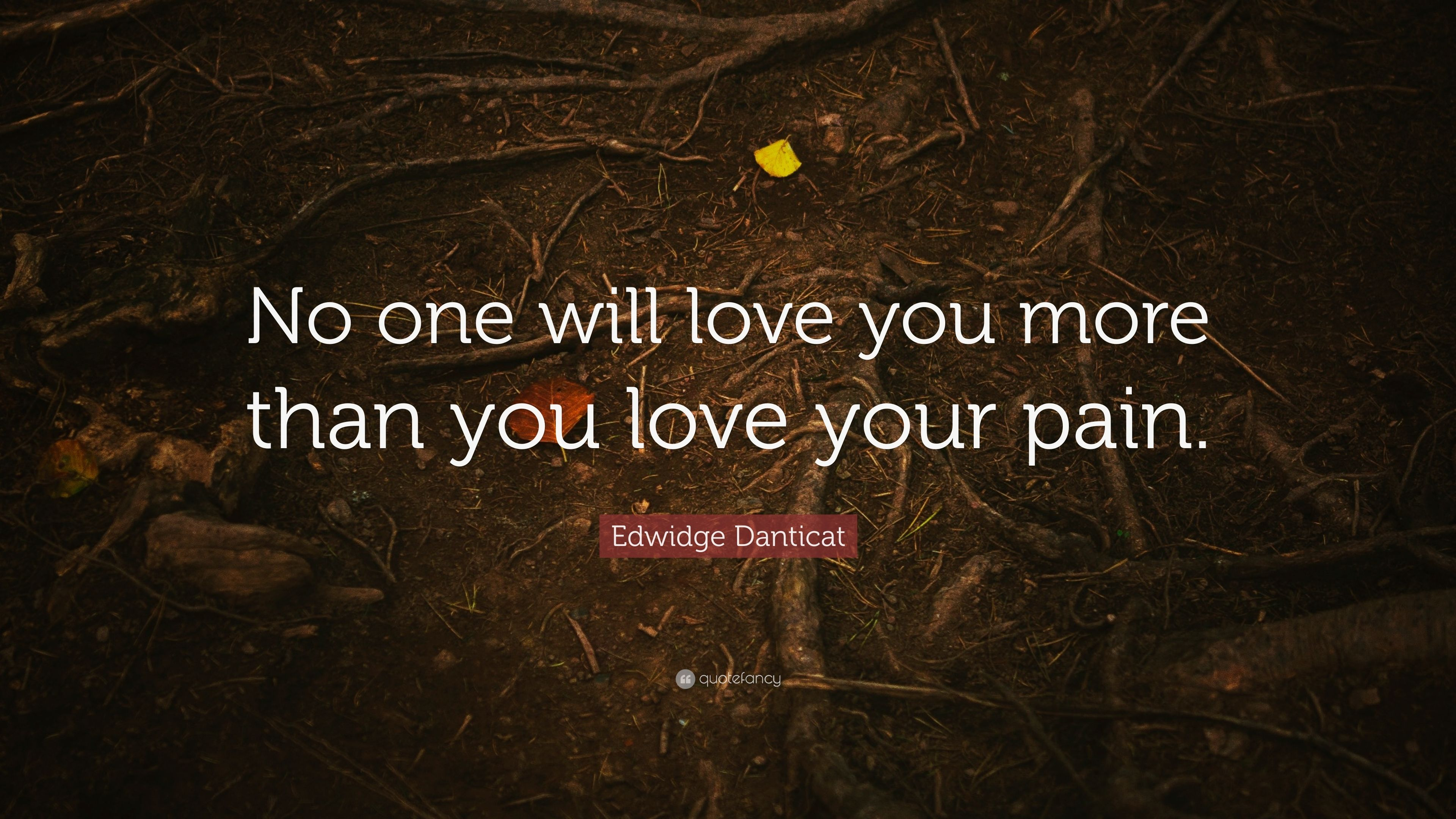 "30 Love You Quotes For Your Loved Ones: Edwidge Danticat Quote: ""No One Will Love You More Than"