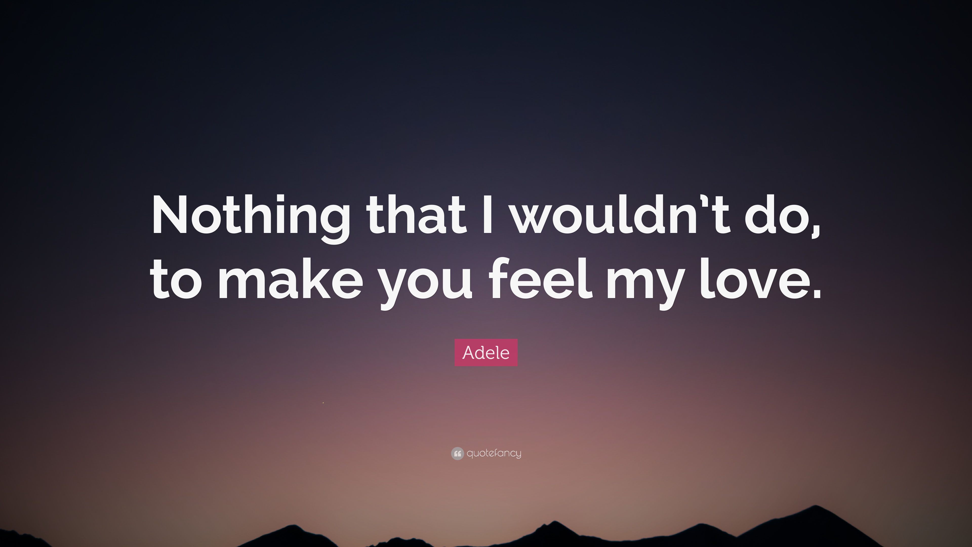 Adele Quote Nothing That I Wouldnt Do To Make You Feel My Love