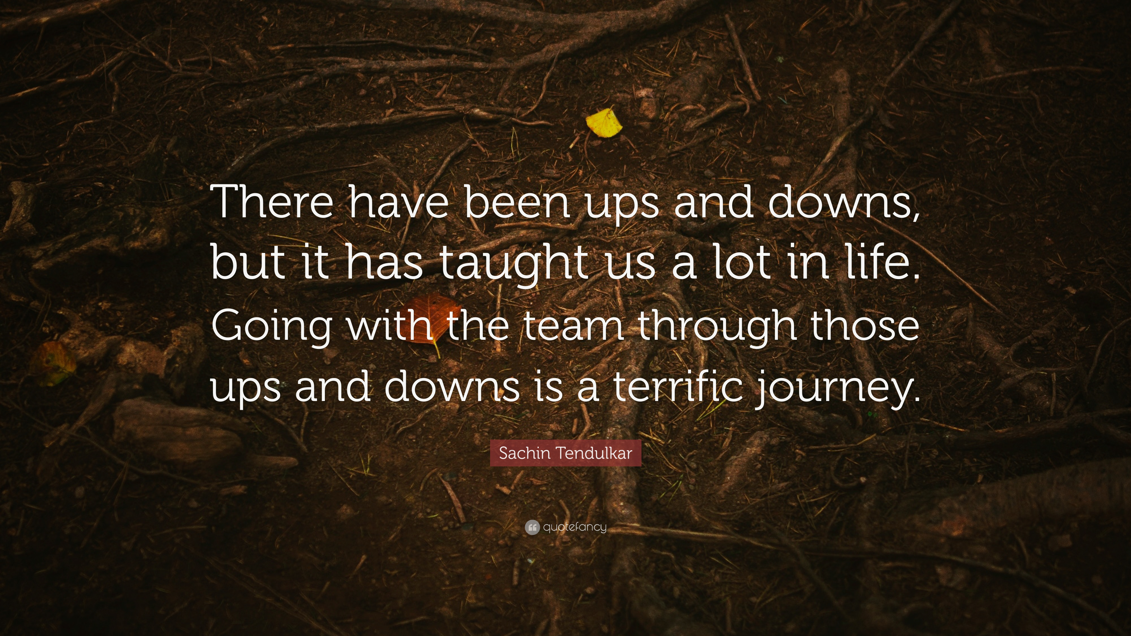 Sachin Tendulkar Quote There Have Been Ups And Downs But It Has Taught Us A Lot In Life Going With The Team Through Those Ups And Downs Is A 7 Wallpapers Quotefancy