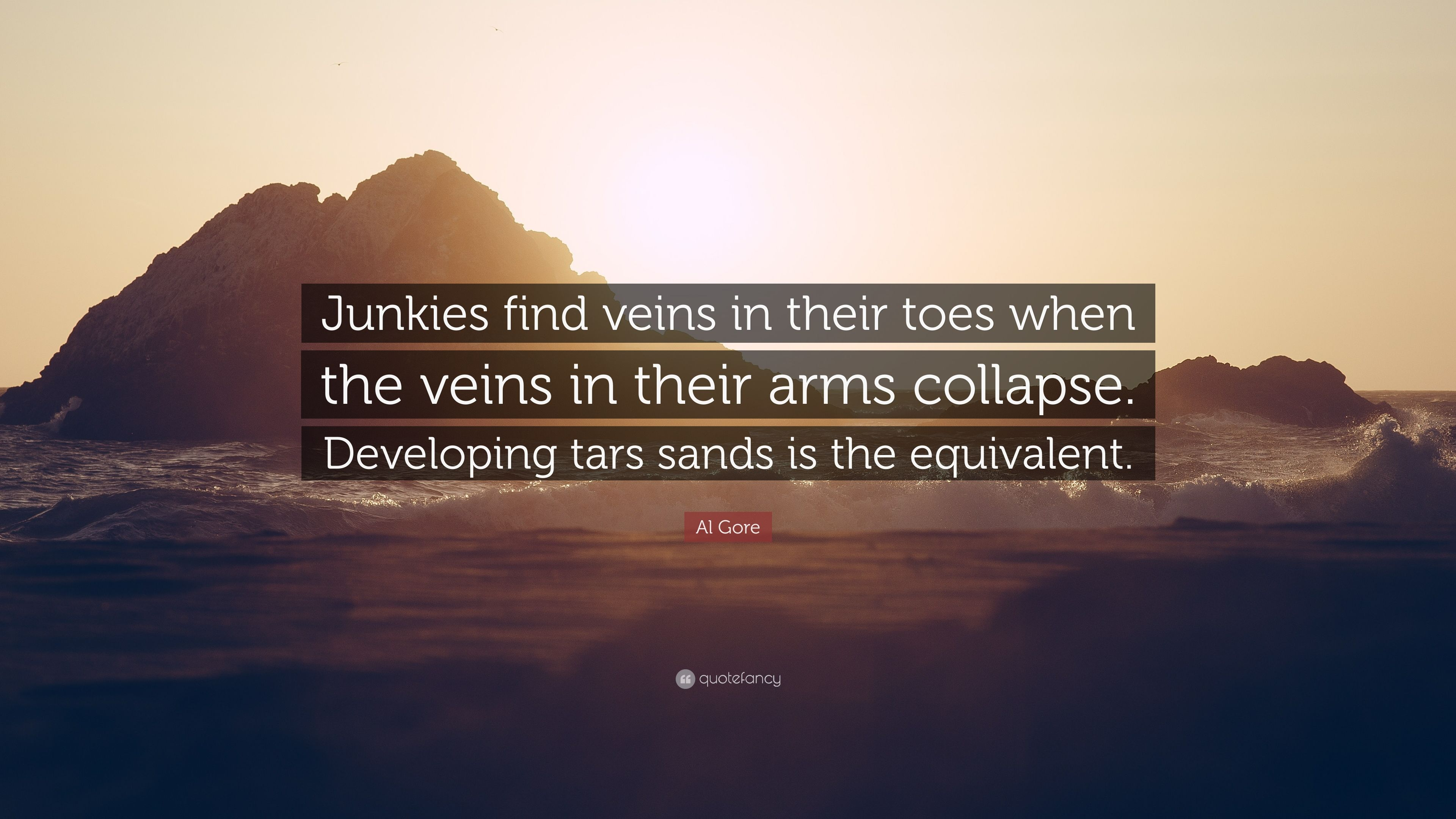 Al Gore Quote Junkies Find Veins In Their Toes When The Veins In