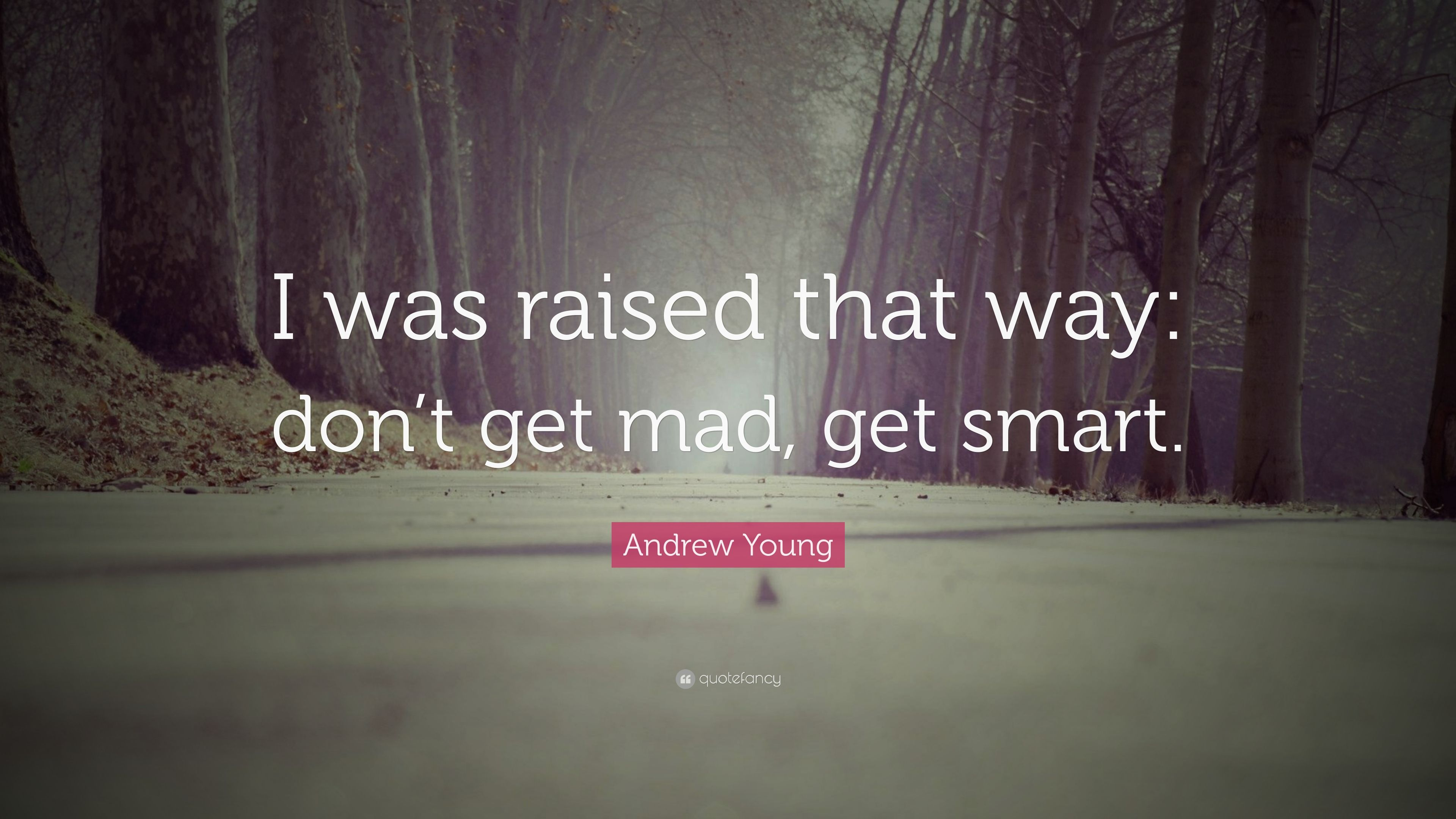 Great Andrew Young Quote: U201cI Was Raised That Way: Donu0027t Get Mad