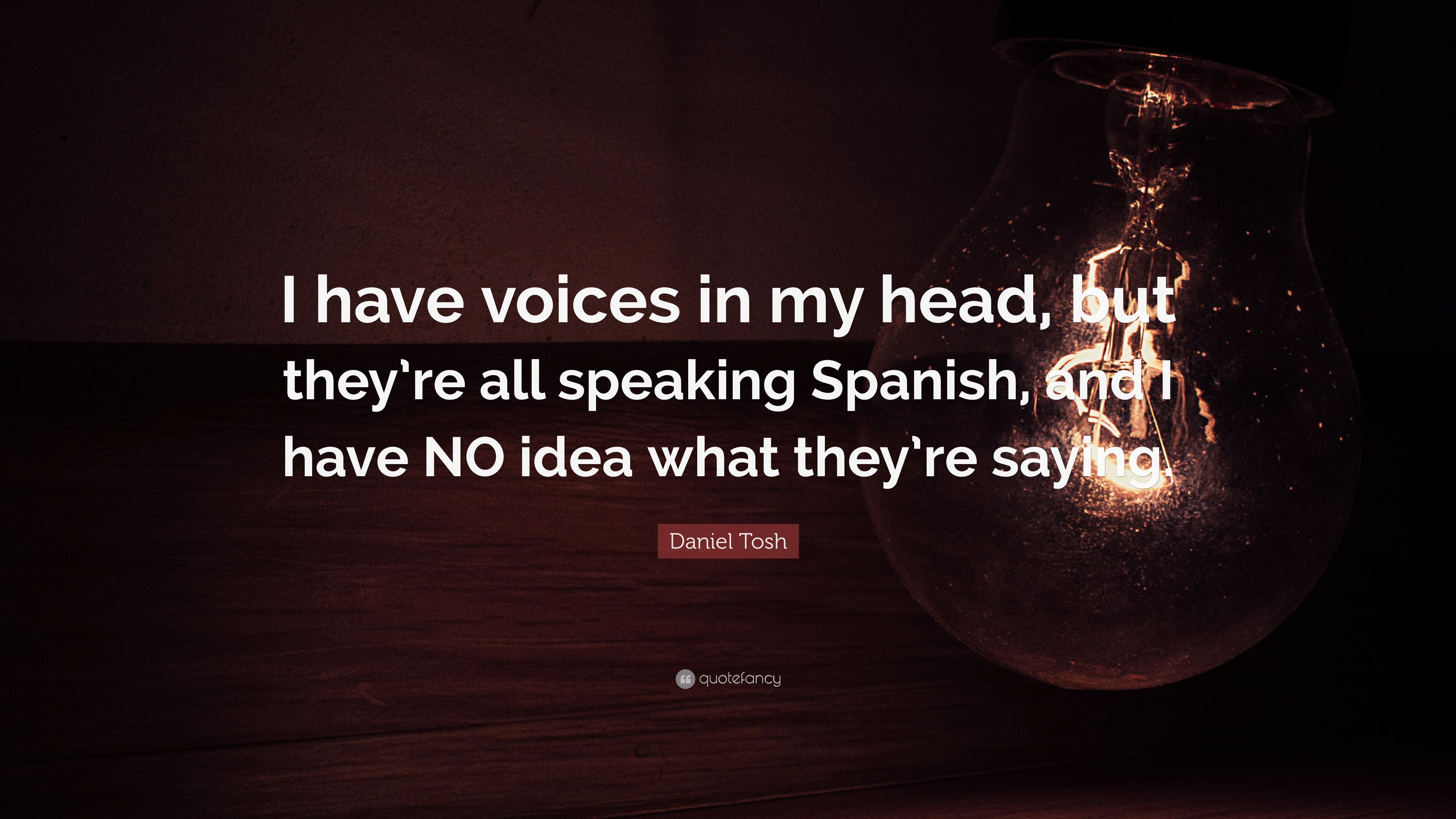 Daniel Tosh Quote I Have Voices In My Head But Theyre All