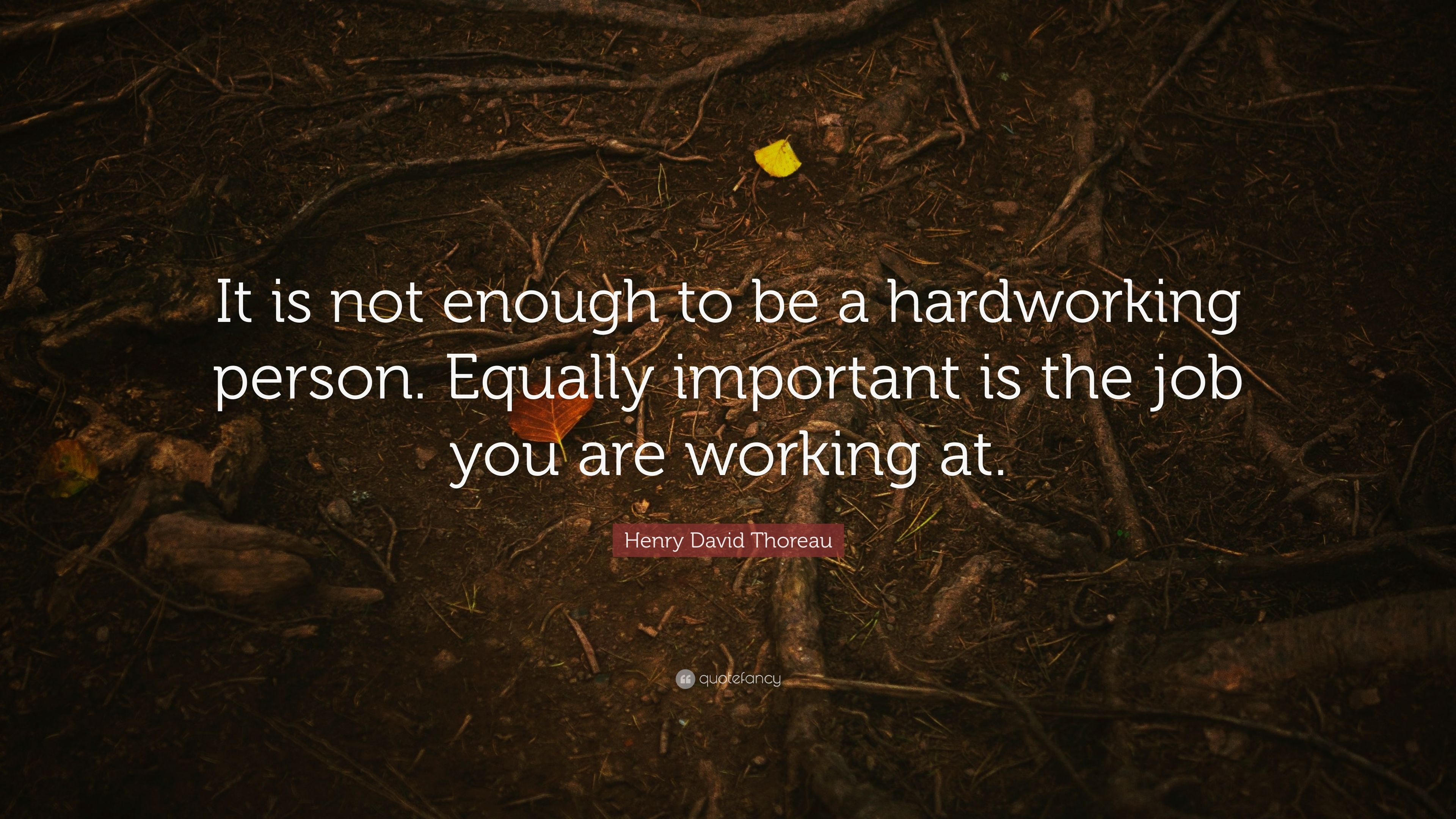 Henry David Thoreau Quote It Is Not Enough To Be A Hardworking