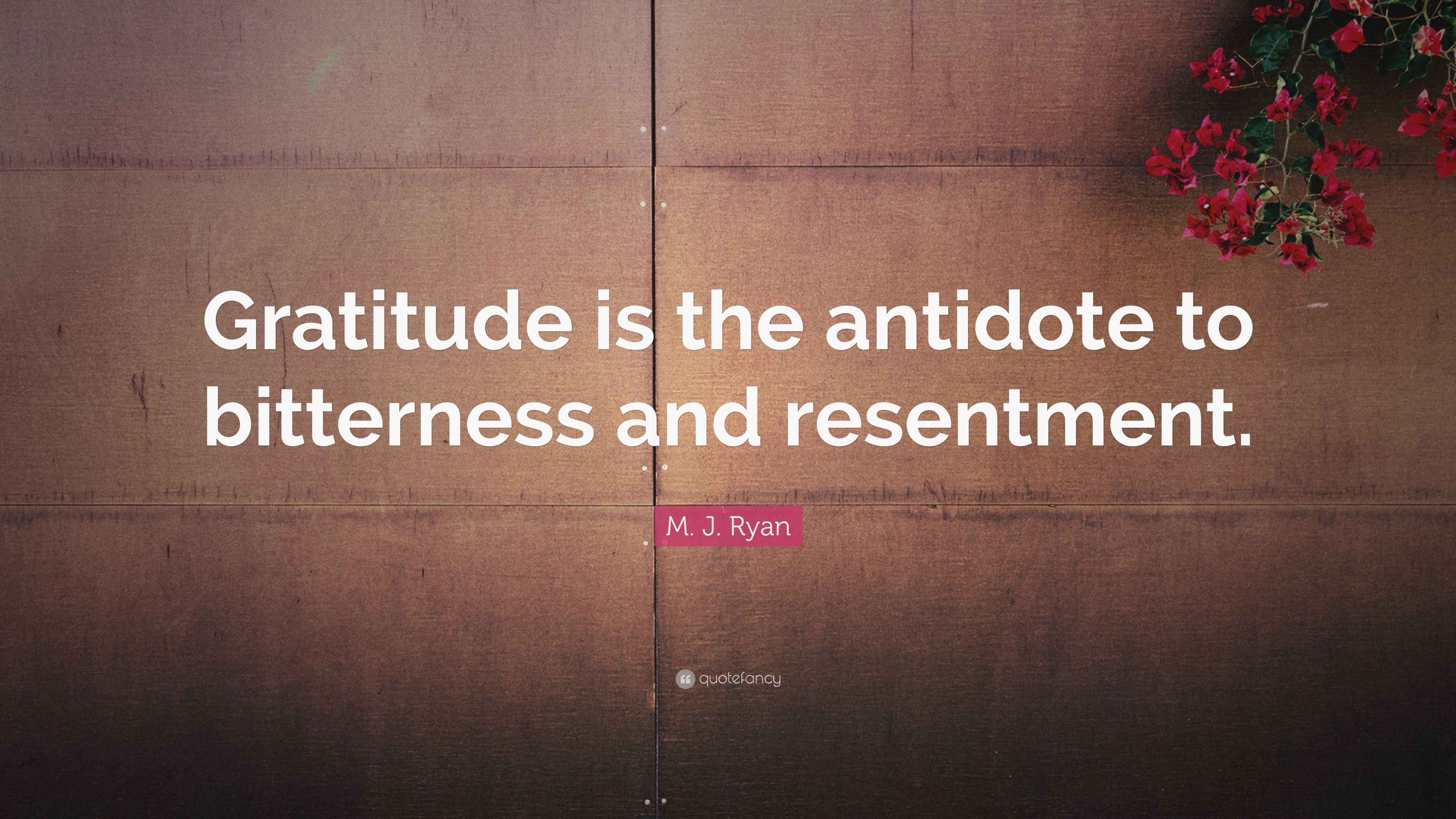 quotes about bitterness and resentment