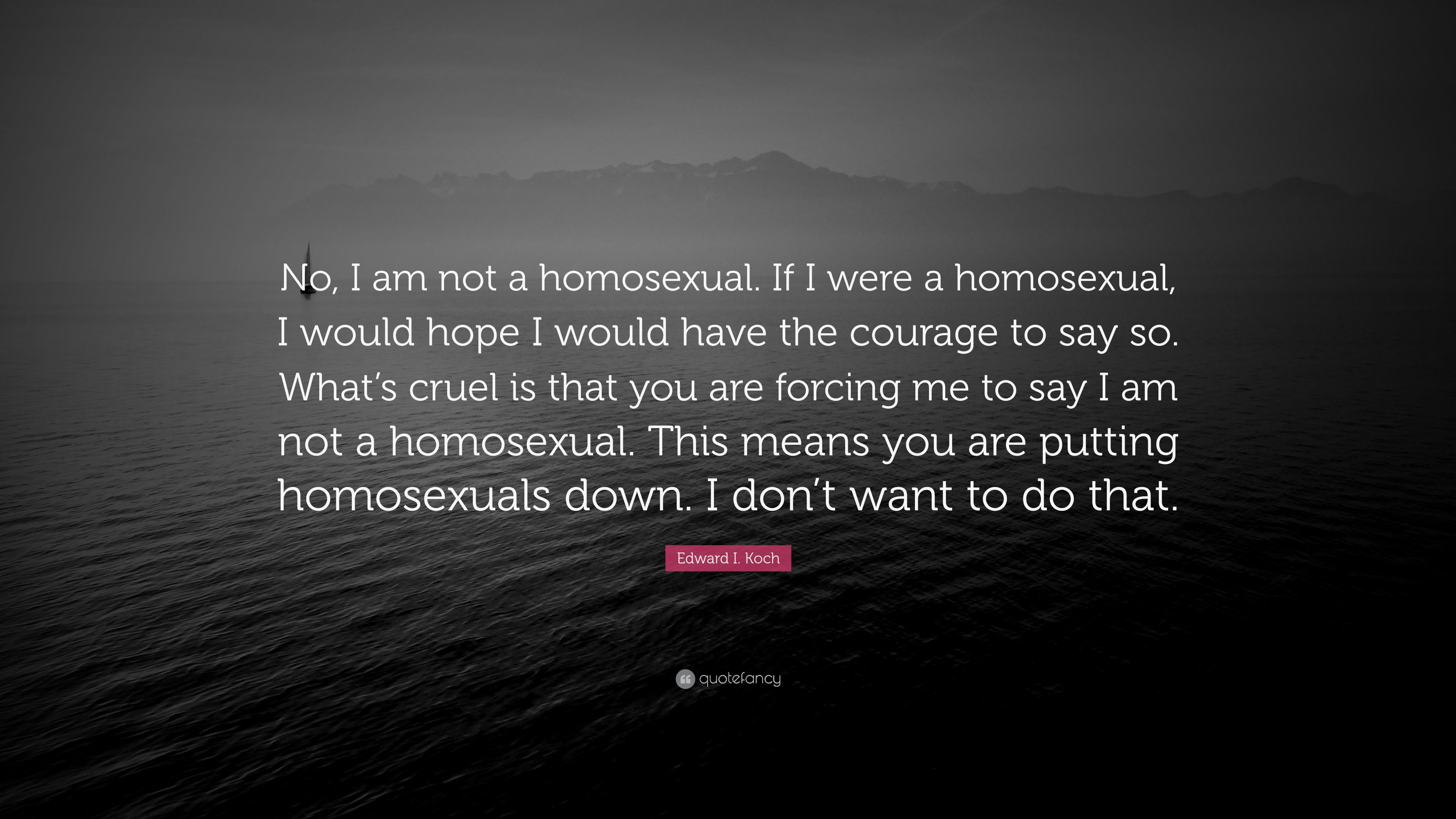 What does homosexual means