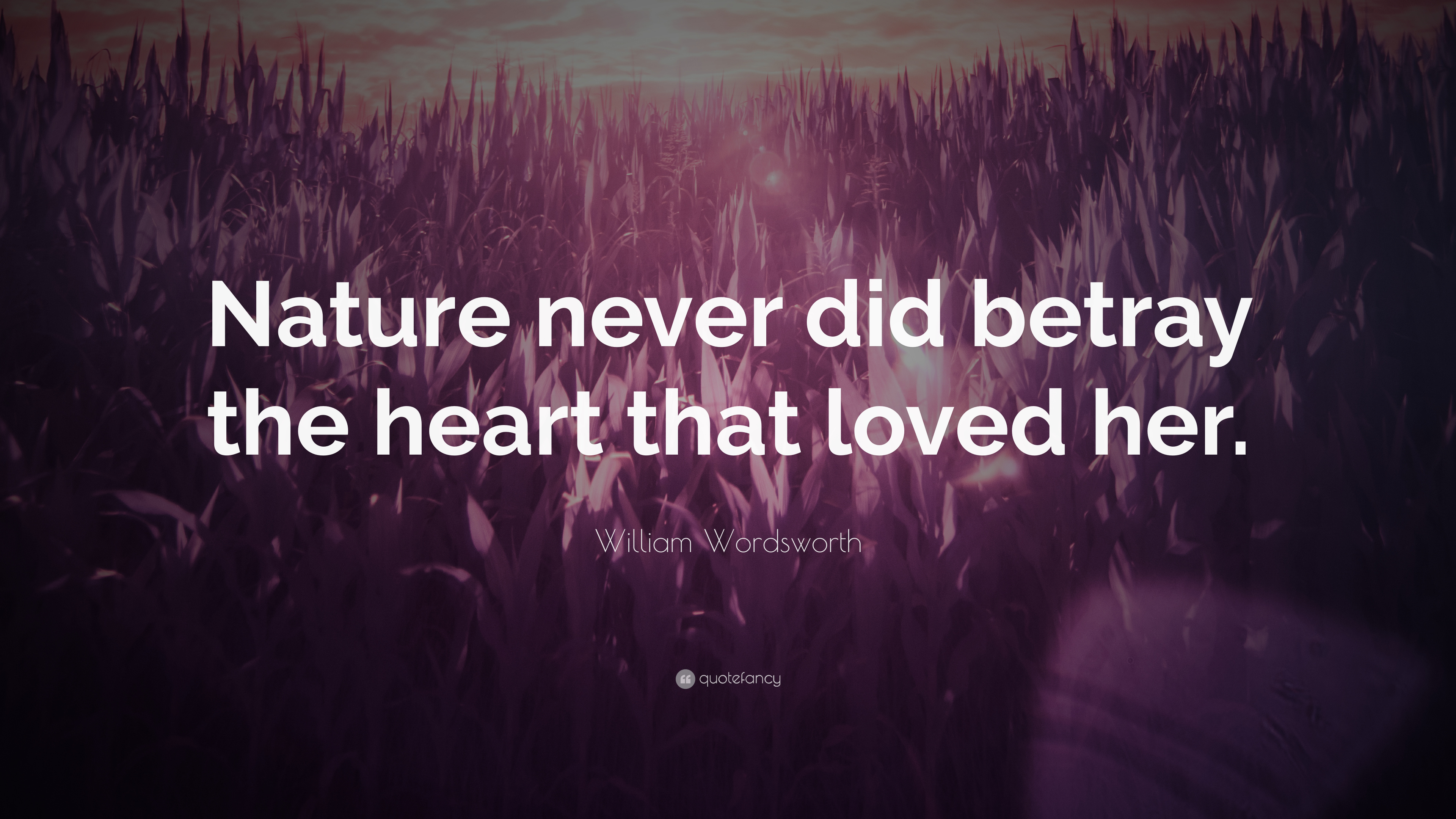 nature never did betray the heart that loved her
