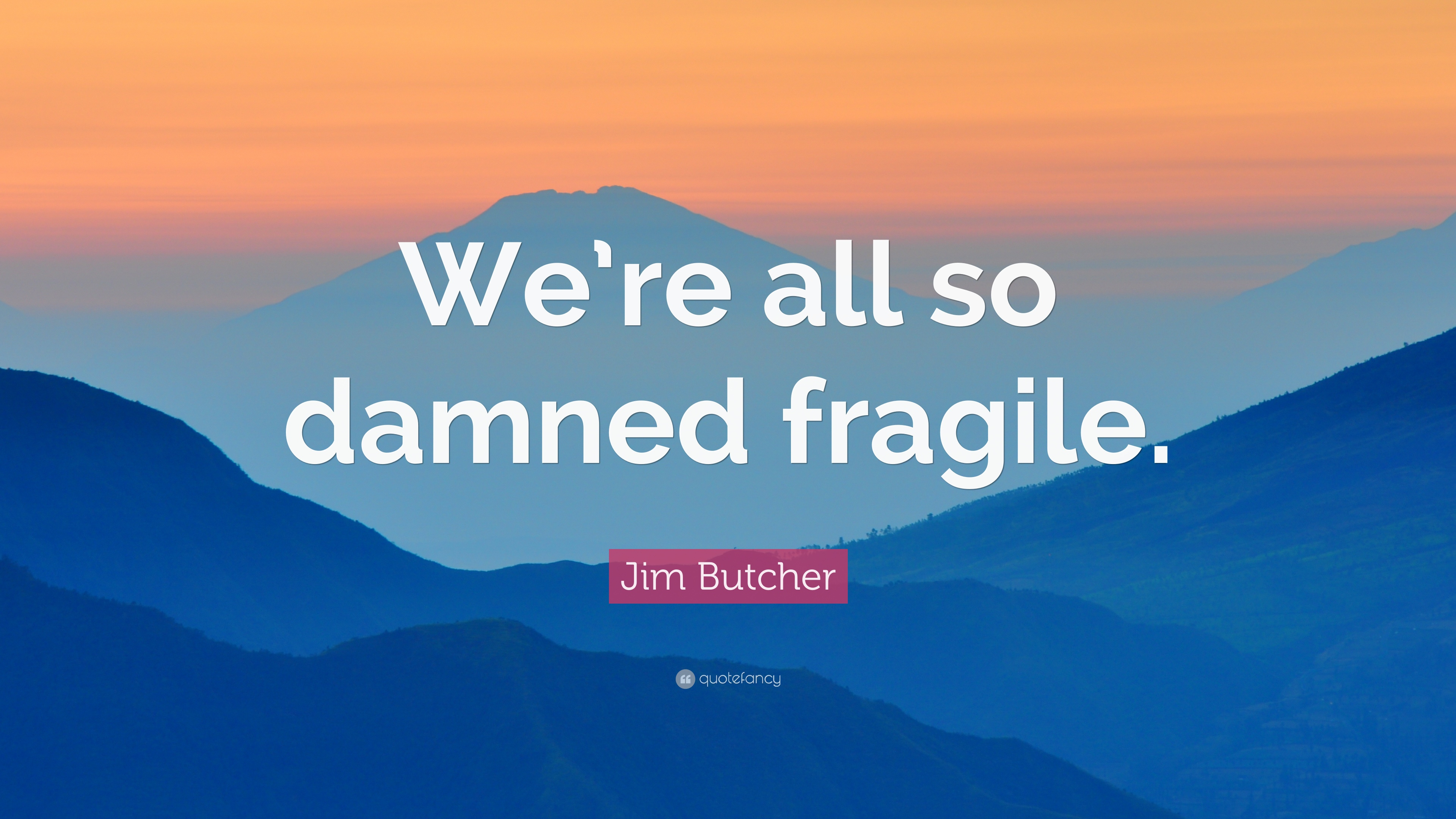"Jim Butcher Quote: ""We're All So Damned Fragile."" (7"