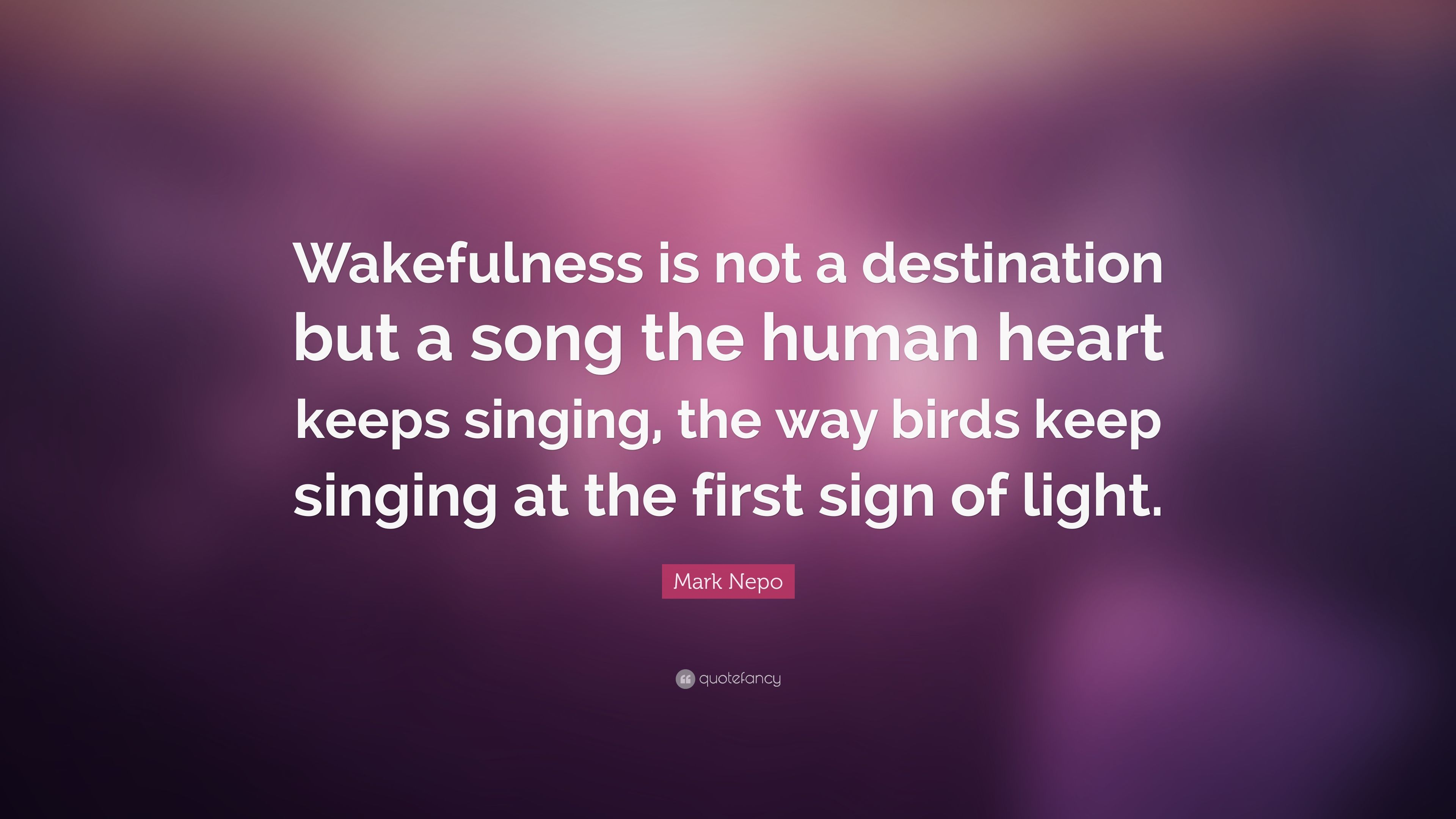 """Mark Nepo Quote: """"Wakefulness is not a destination but a"""