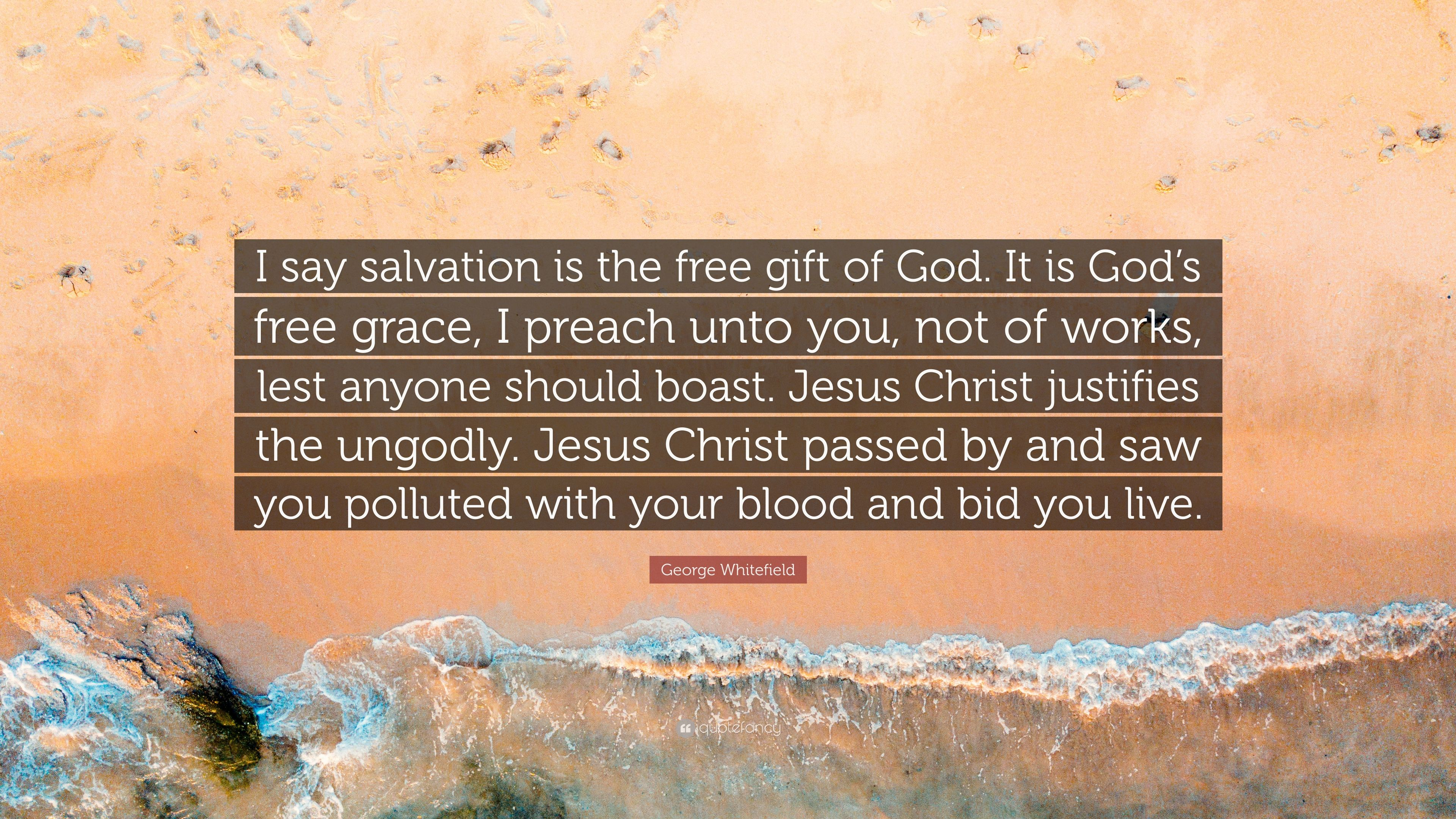"""George Whitefield Quote: """"I say salvation is the free gift"""
