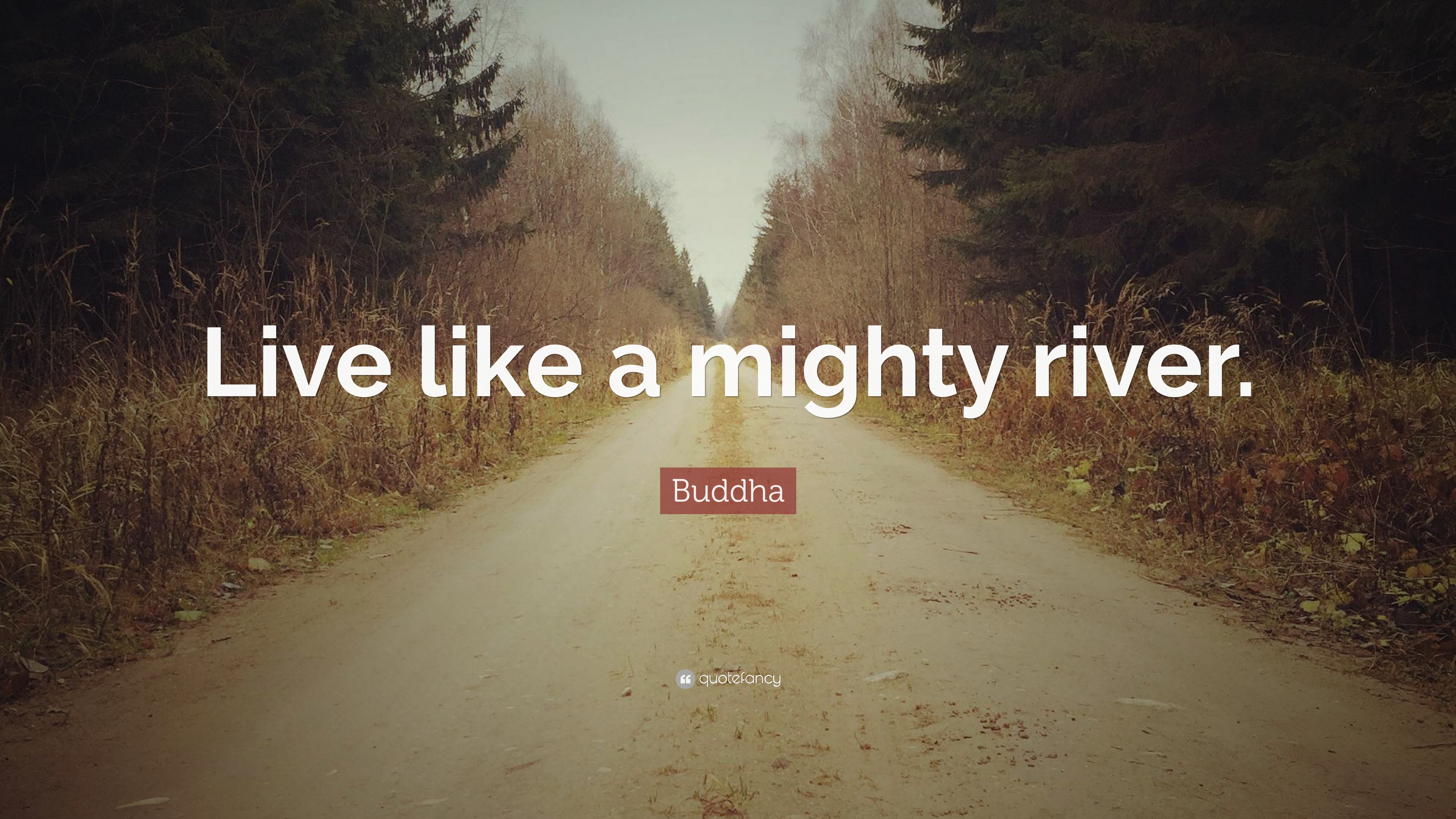 Time Is Like A River Quote: Buddha Quotes (100 Wallpapers)