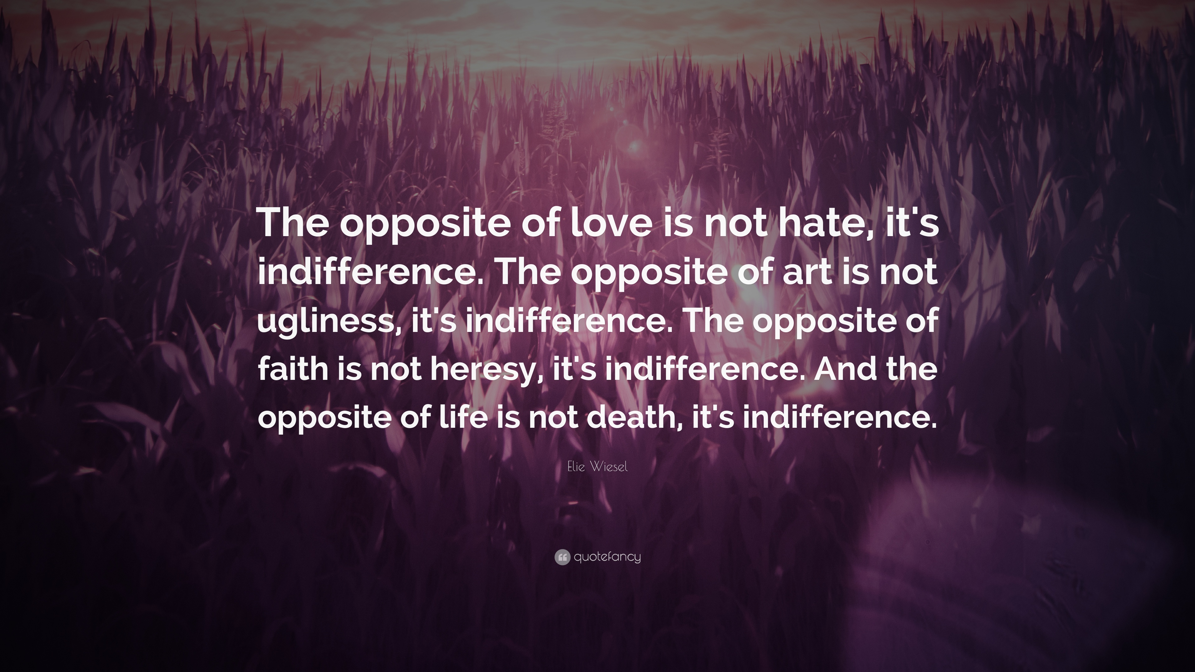 """Indifference Quotes Elie Wiesel Quote """"The Opposite Of Love Is Not Hate It's"""