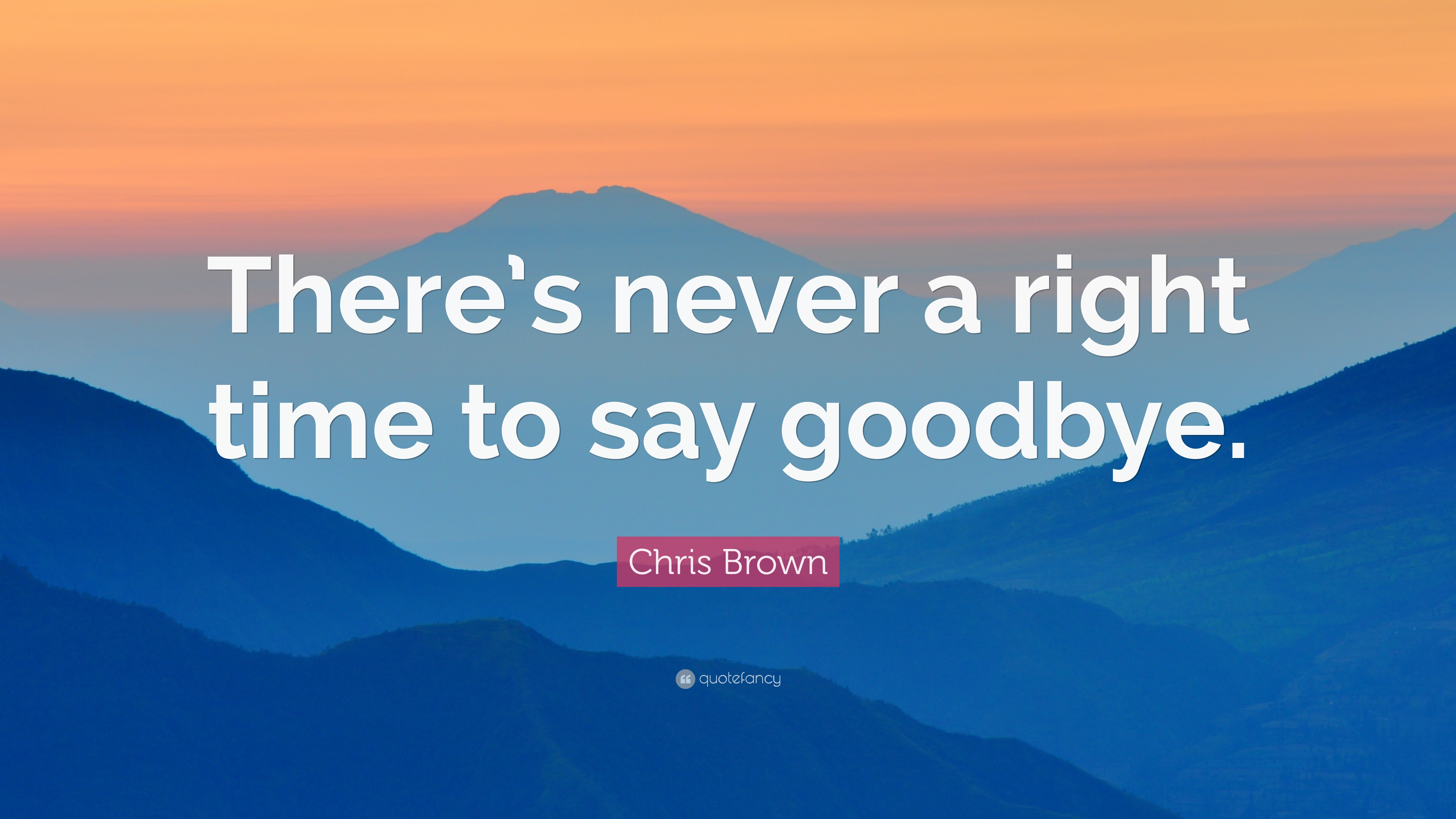 Chris Brown Quote: U201cThereu0027s Never A Right Time To Say Goodbye.u201d