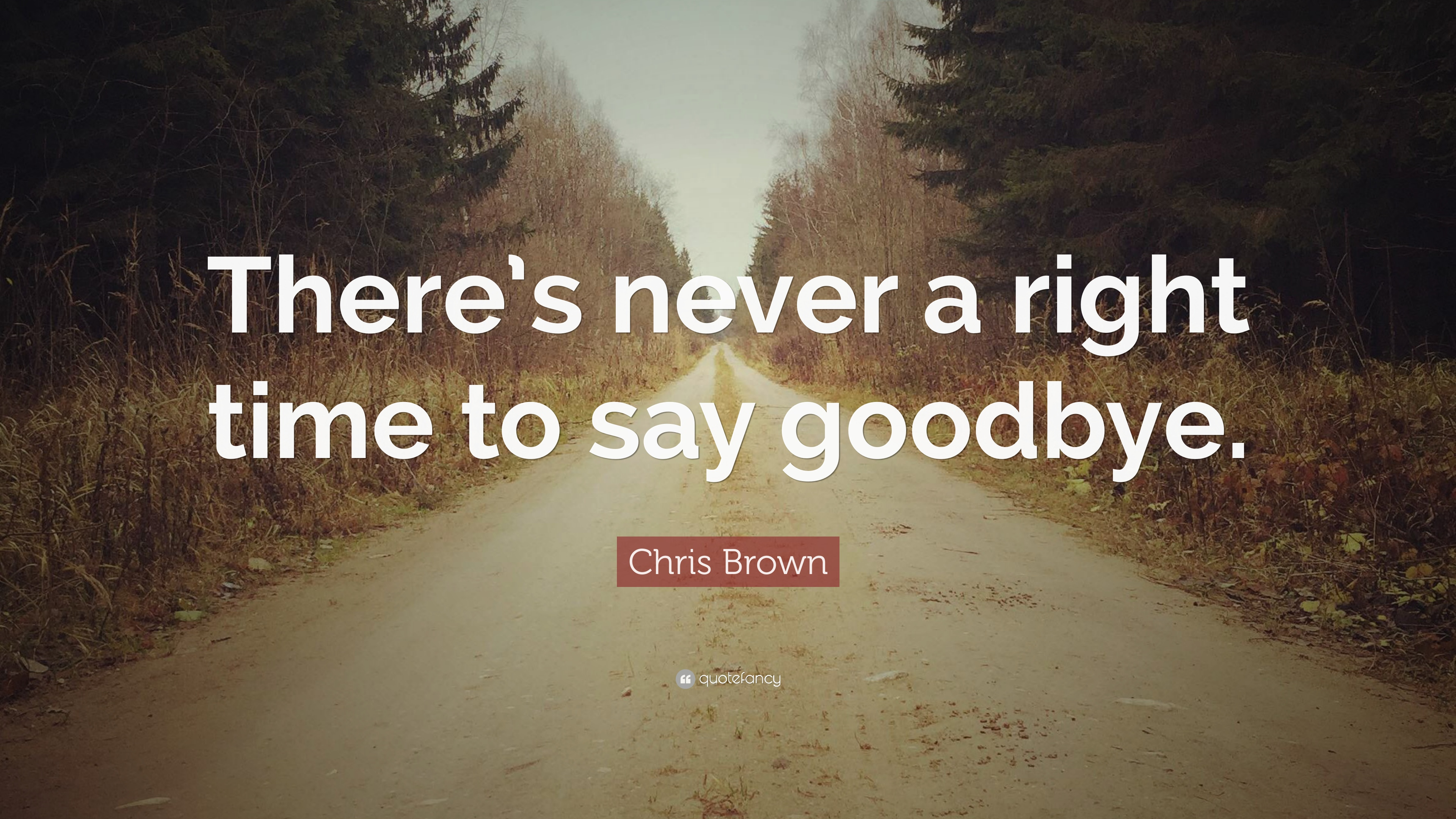Chris Brown Quote: Theres never a right time to say