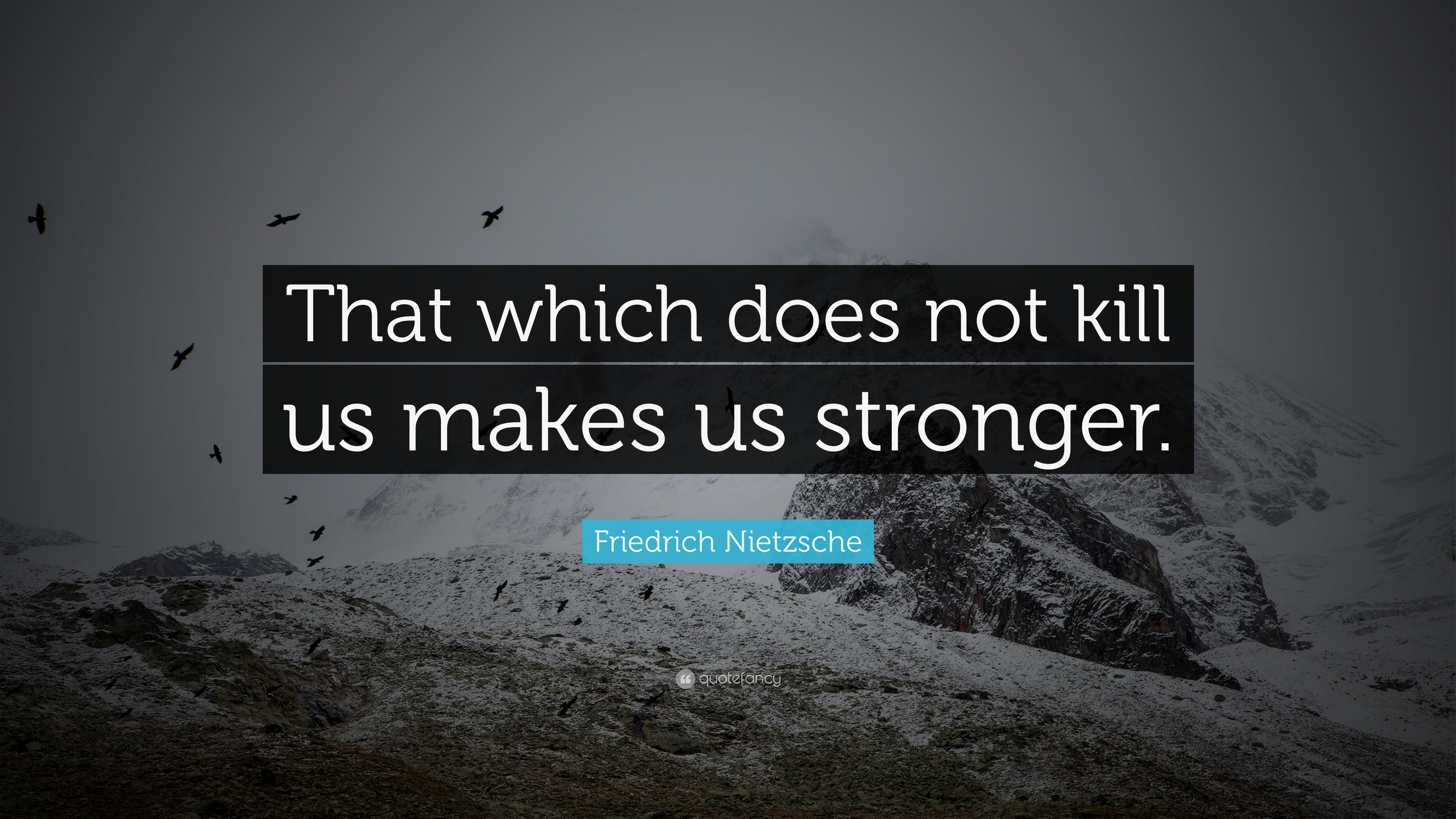 Positive Quotes: U201cThat Which Does Not Kill Us Makes Us Stronger.u201d U2014