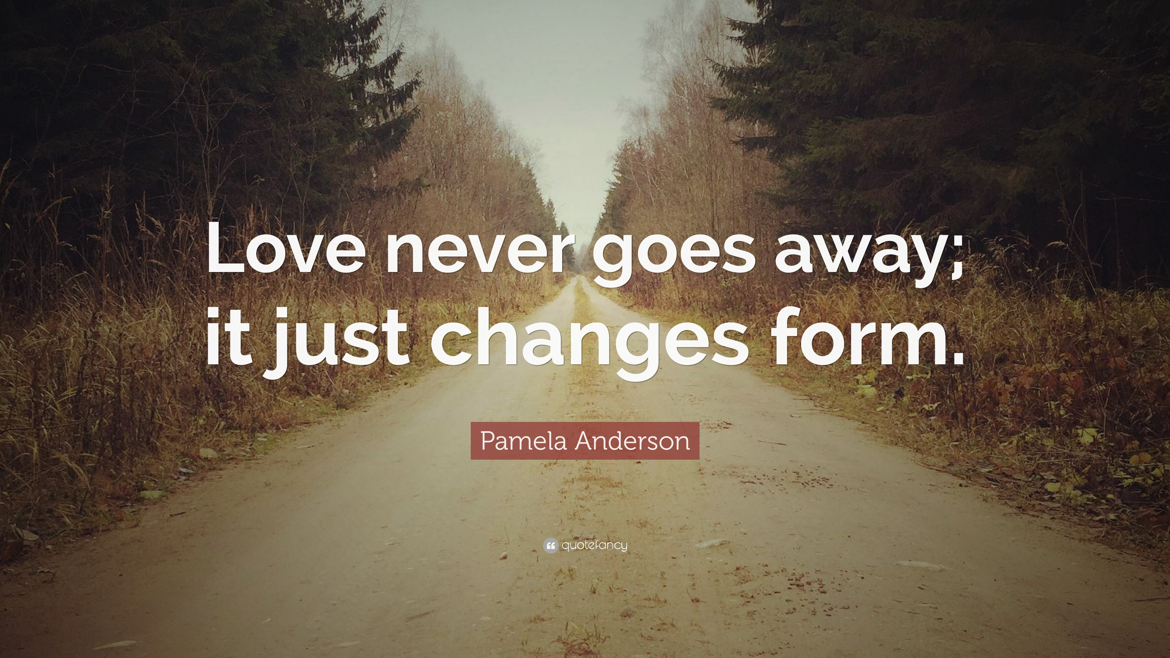 "Pamela Anderson Quote ""Love never goes away it just changes form """