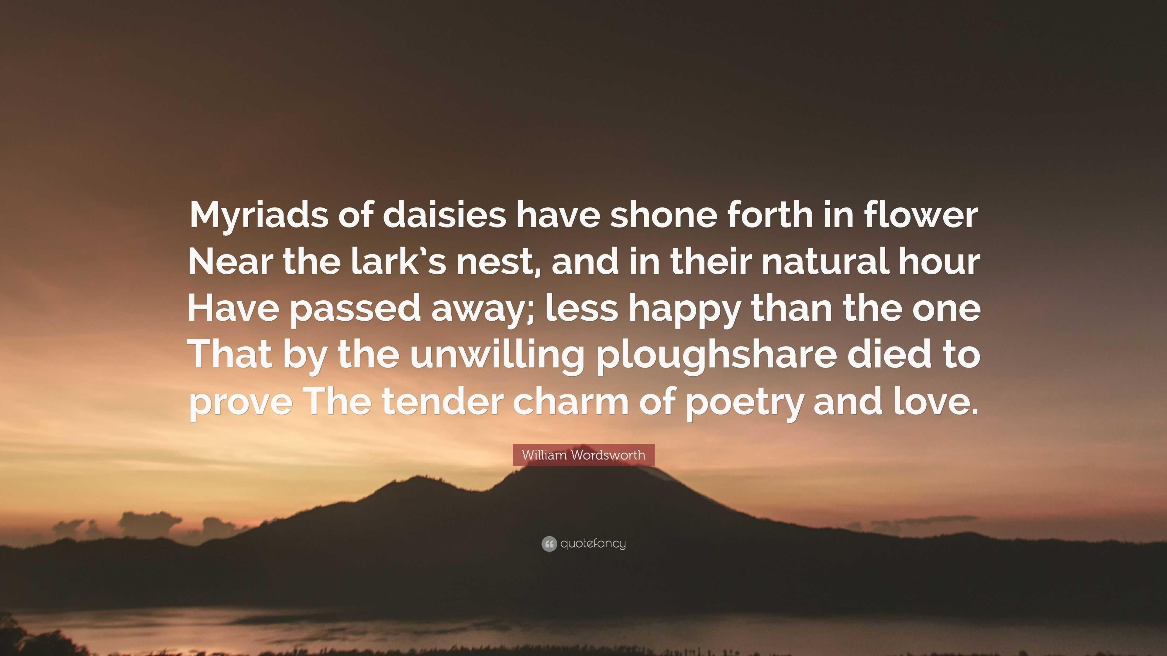 daisy poem wordsworth