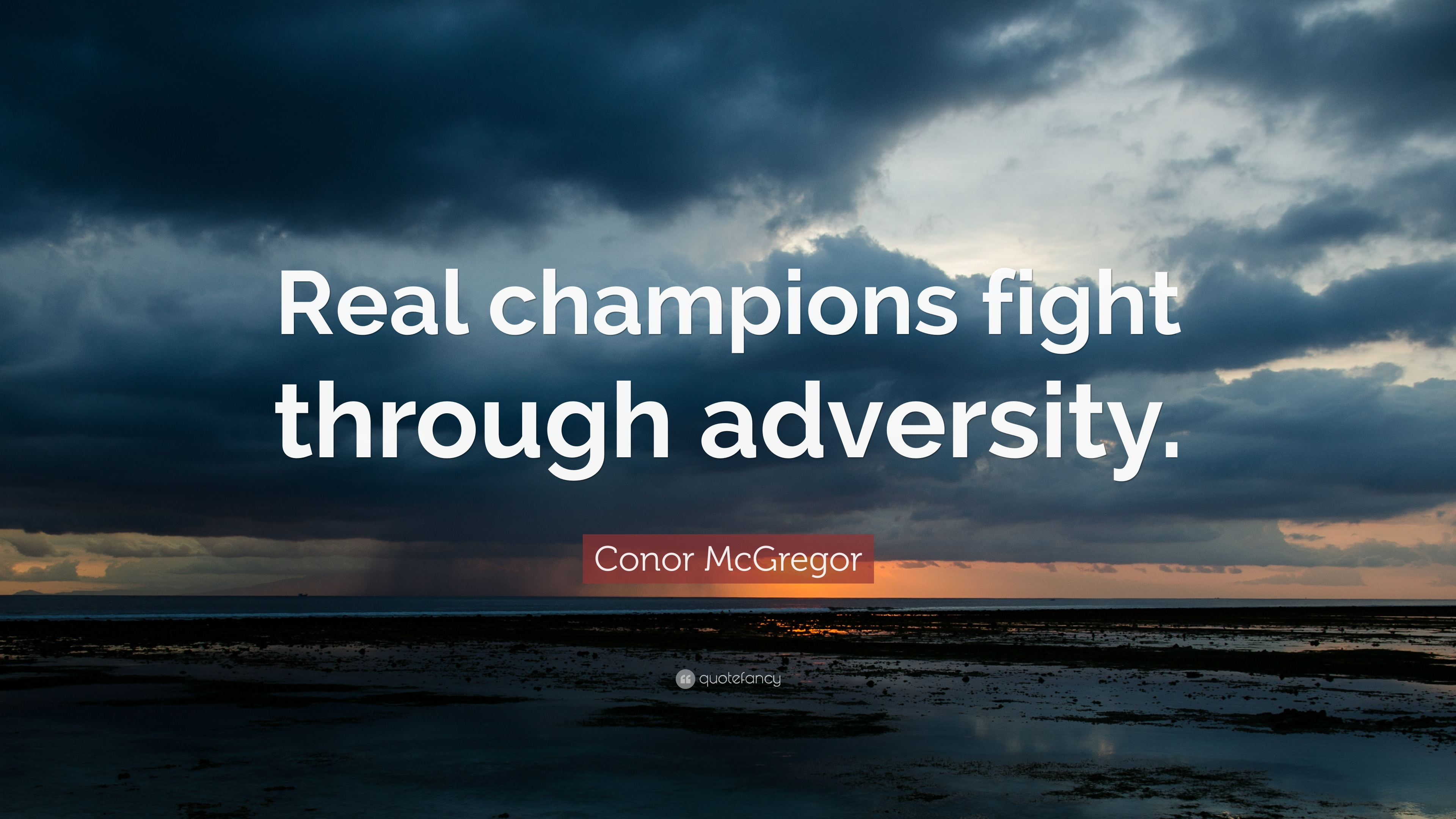 conor mcgregor quote real champions fight through adversity 17