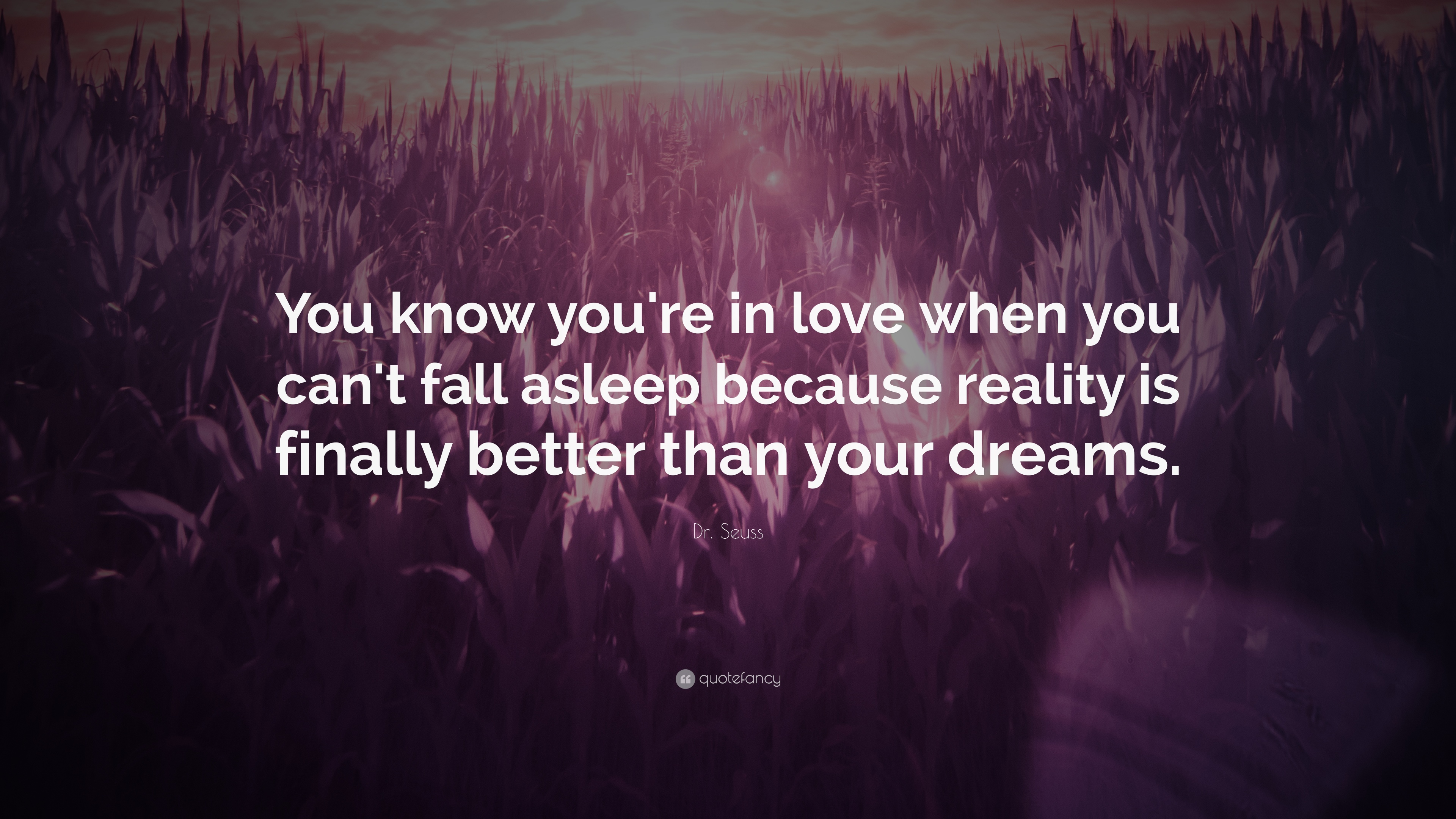 Dr Seuss Quote: €�you Know You're In Love When You Can Dr
