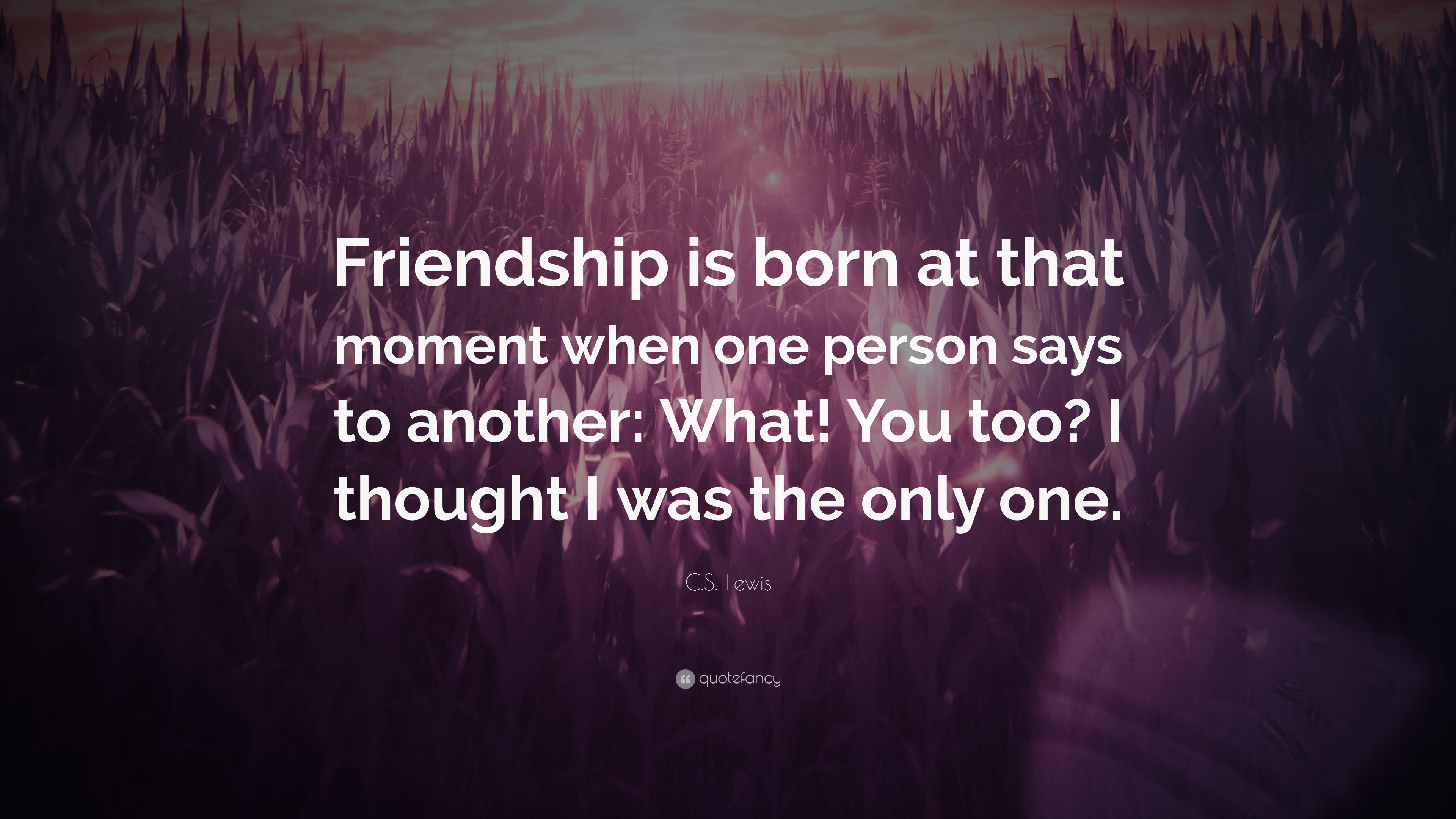 "Cs Lewis Quote About Friendship Cslewis Quote ""Friendship Is Born At That Moment When One"