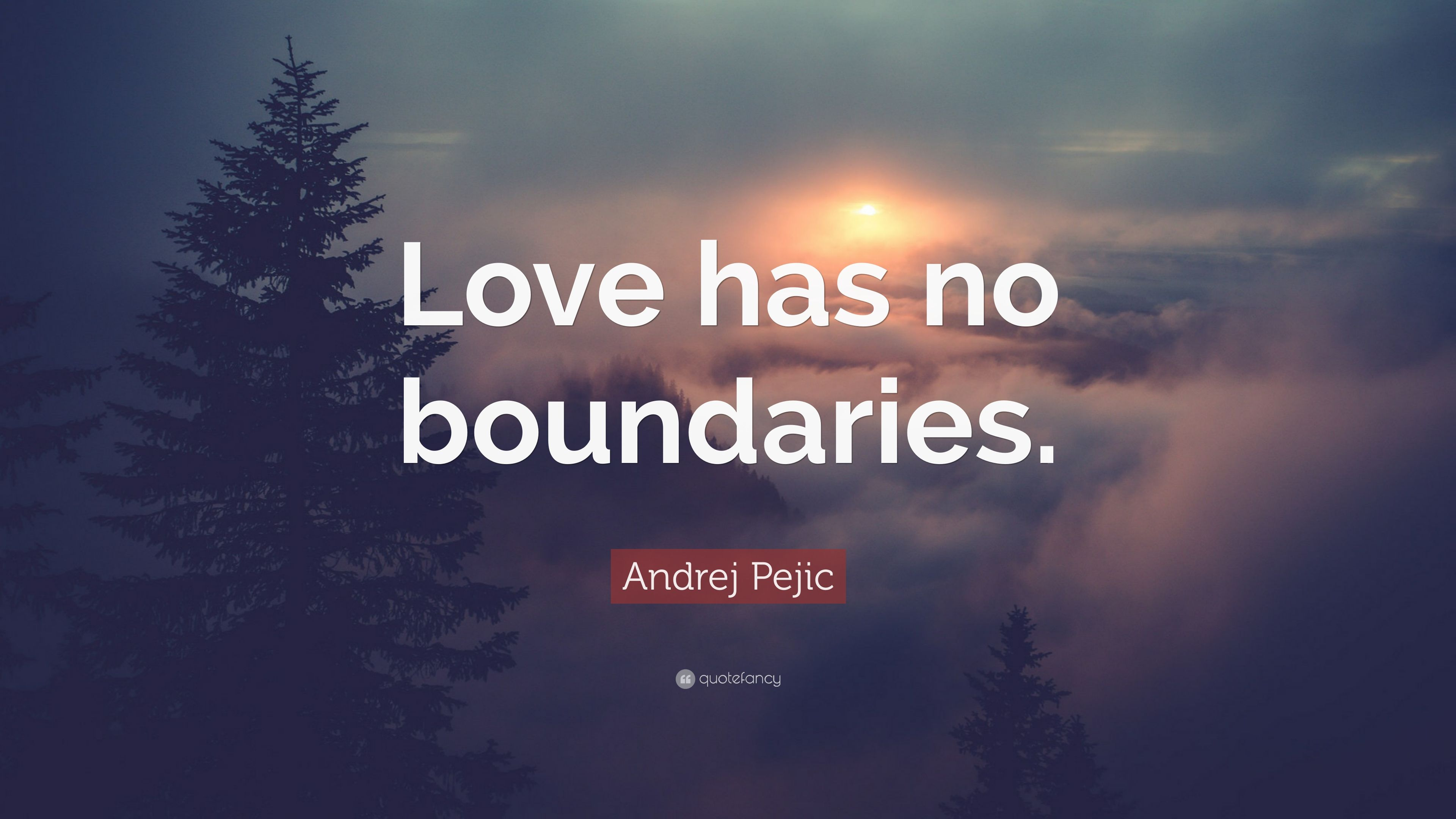 Andrej Pejic Quote Love Has No Boundaries 7 Wallpapers