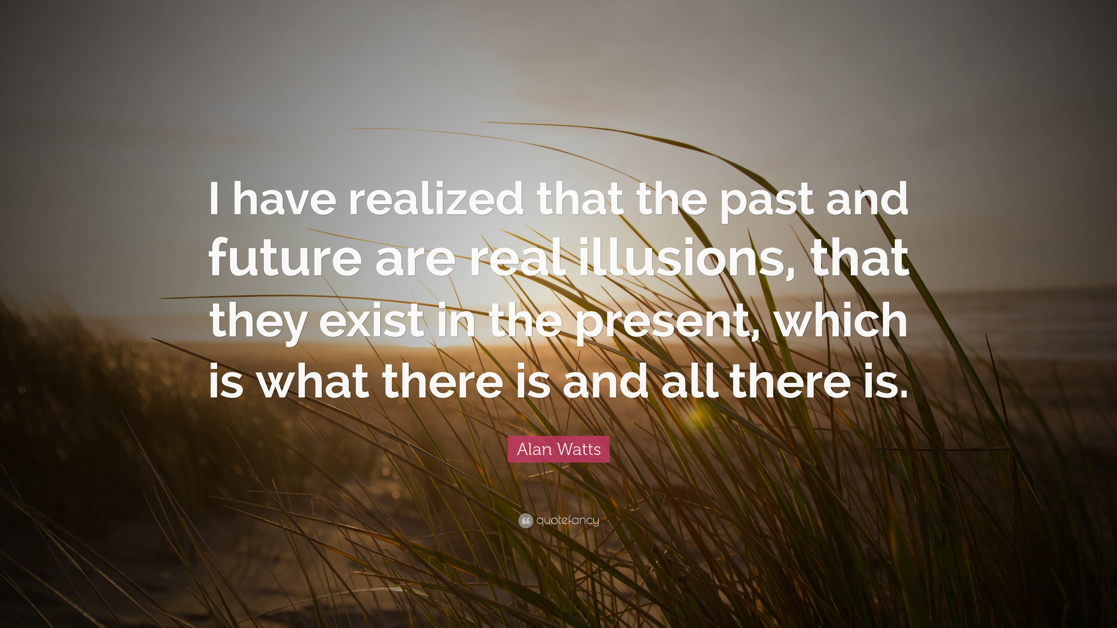 Alan Watts Quotes (57 Wallpapers)