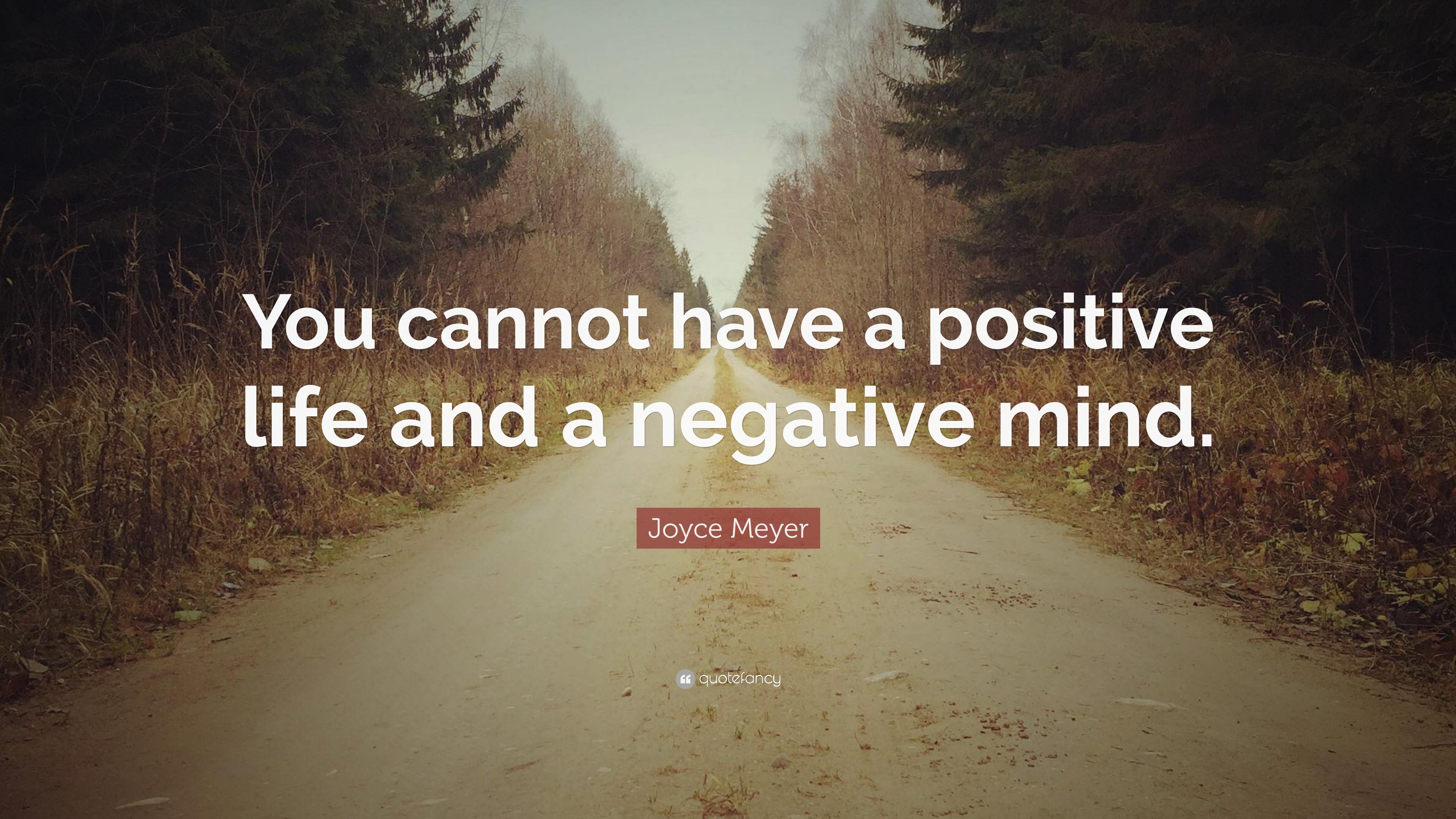Joyce Meyer Quote: U201cYou Cannot Have A Positive Life And A Negative Mind.