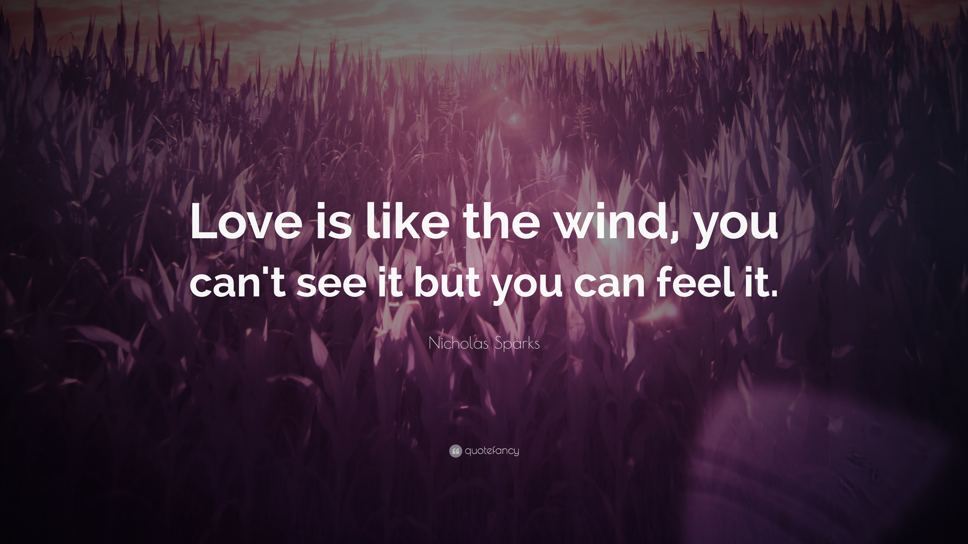 "Nicholas Sparks Quote: ""Love Is Like The Wind, You Can't"
