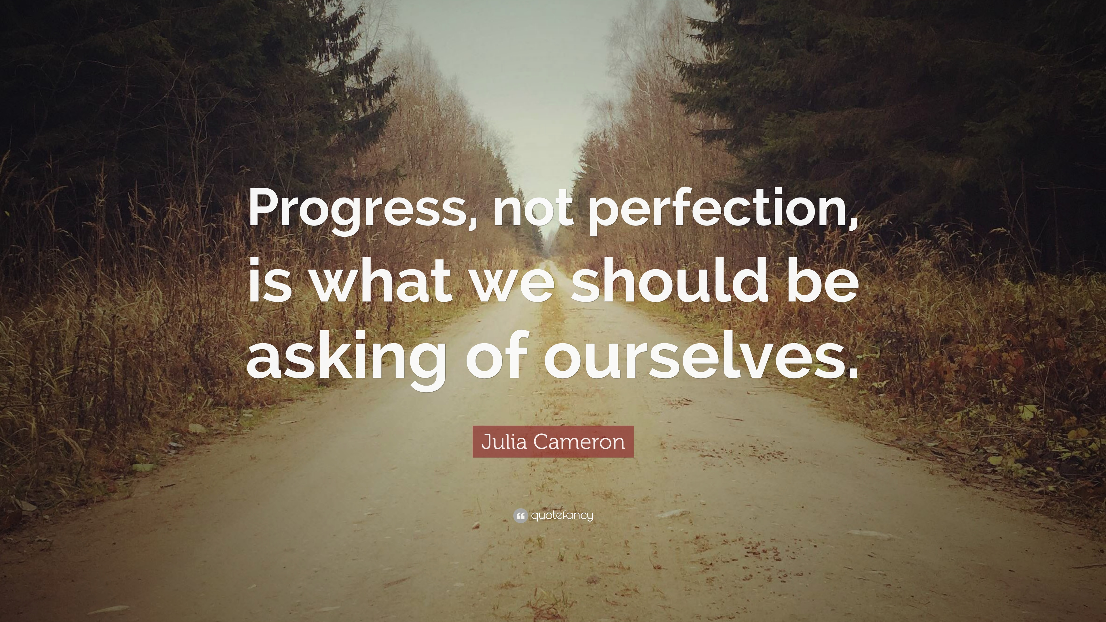"Julia Cameron Quote: ""Progress, not perfection, is what we ..."