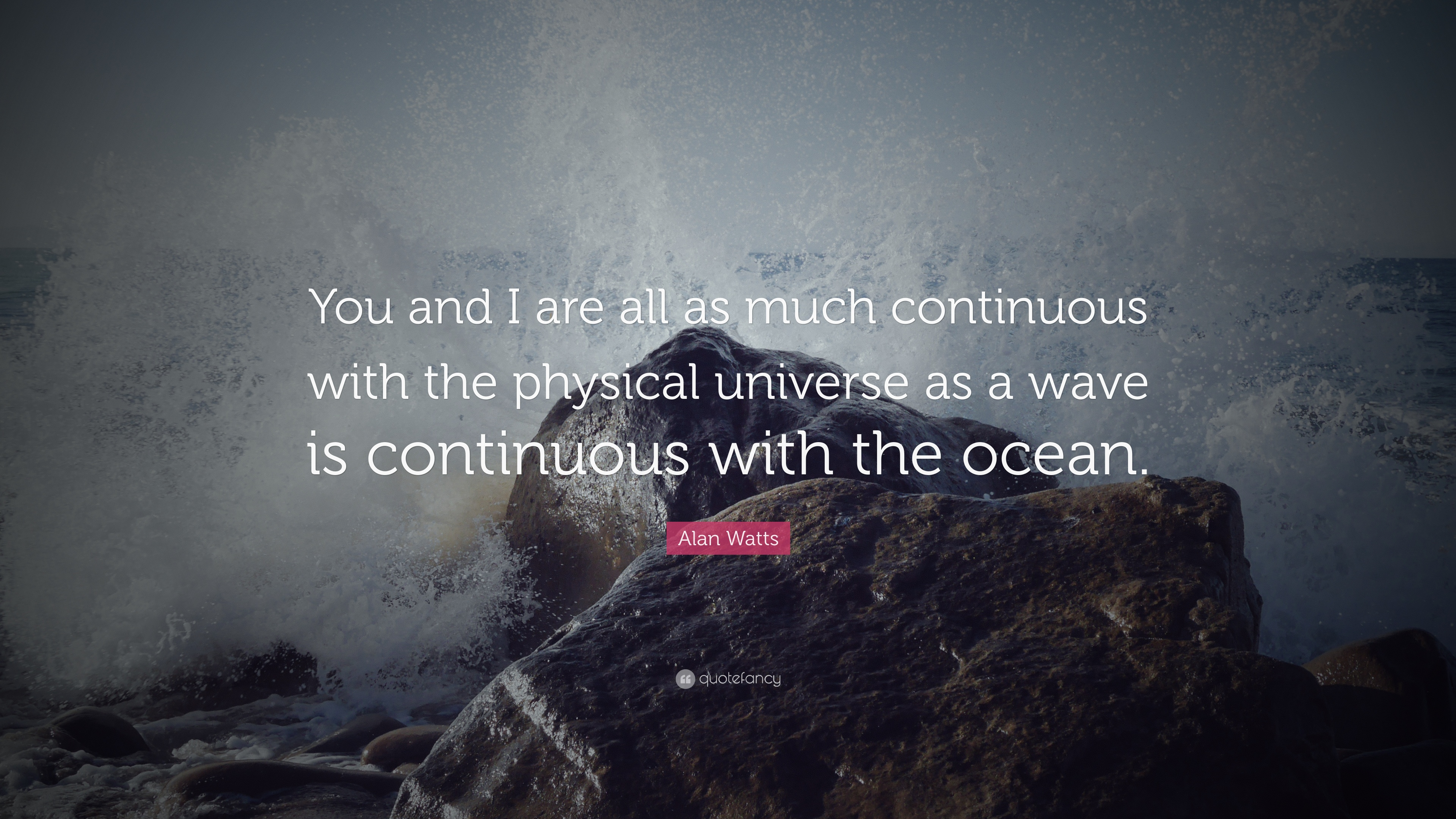 Quotes About Discovery Inspired By The Ocean: Alan Watts Quotes (57 Wallpapers)