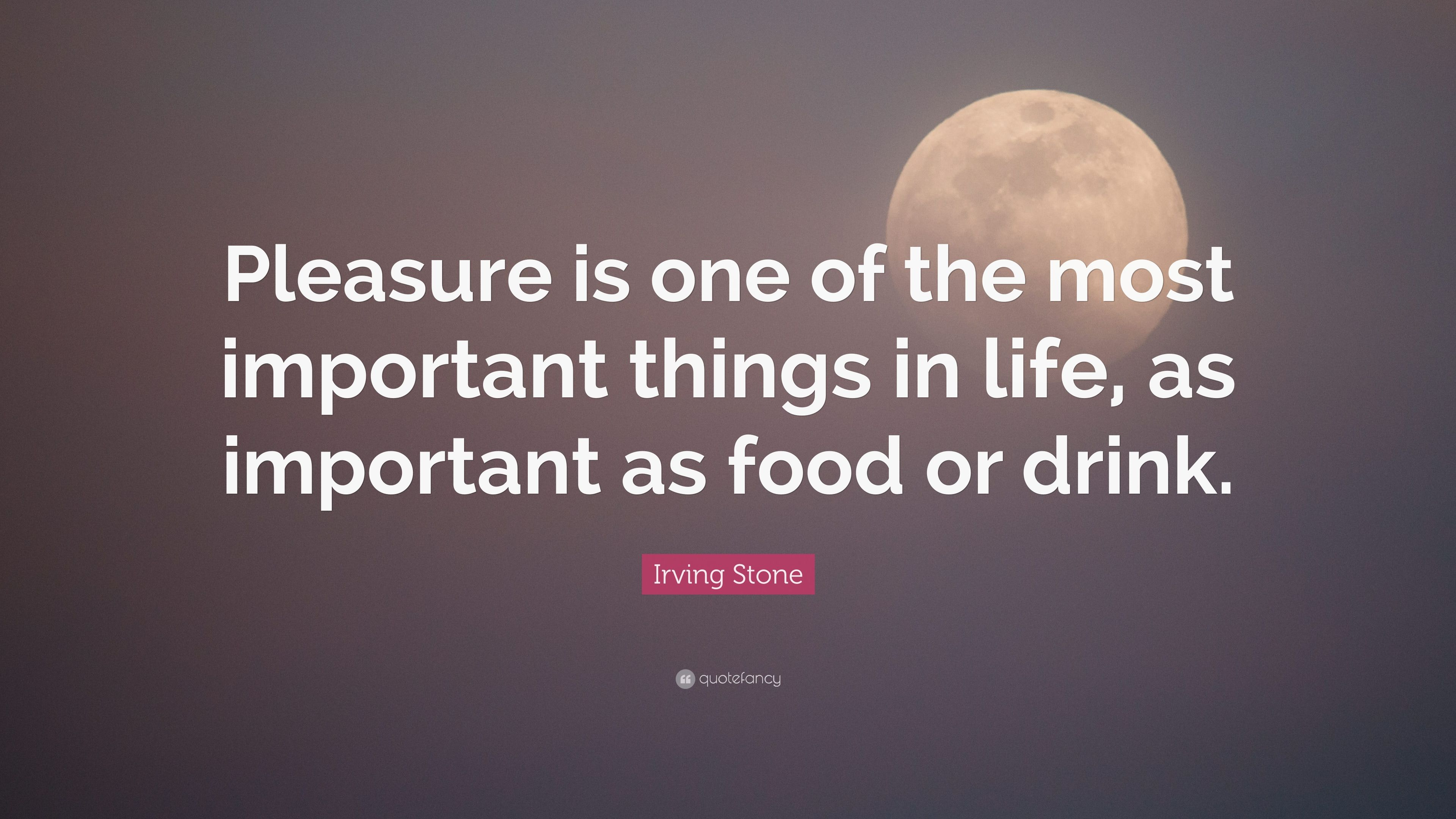 Irving Stone Quote Pleasure Is One Of The Most Important