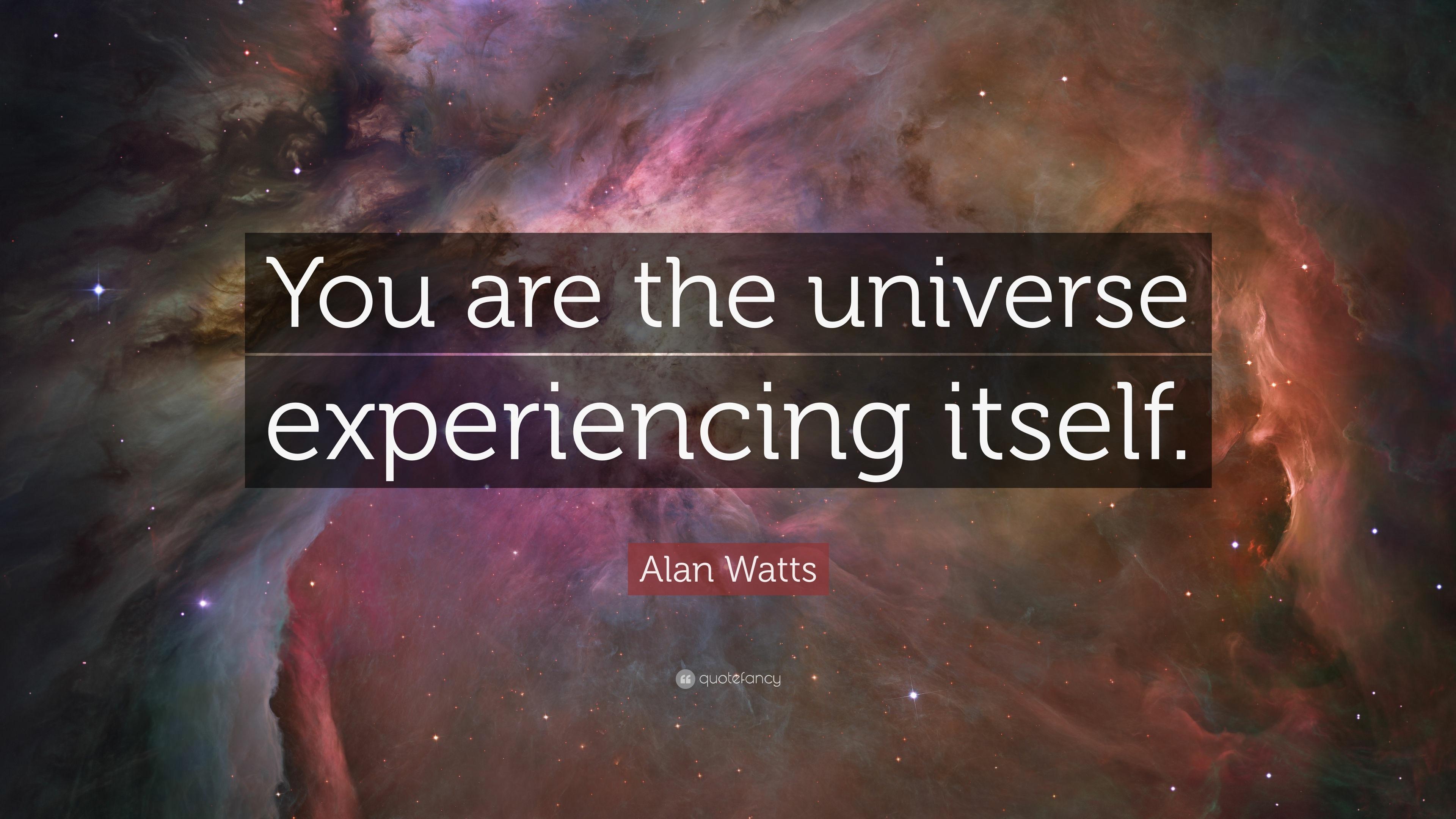 Resultado de imagem para alan watts quotes