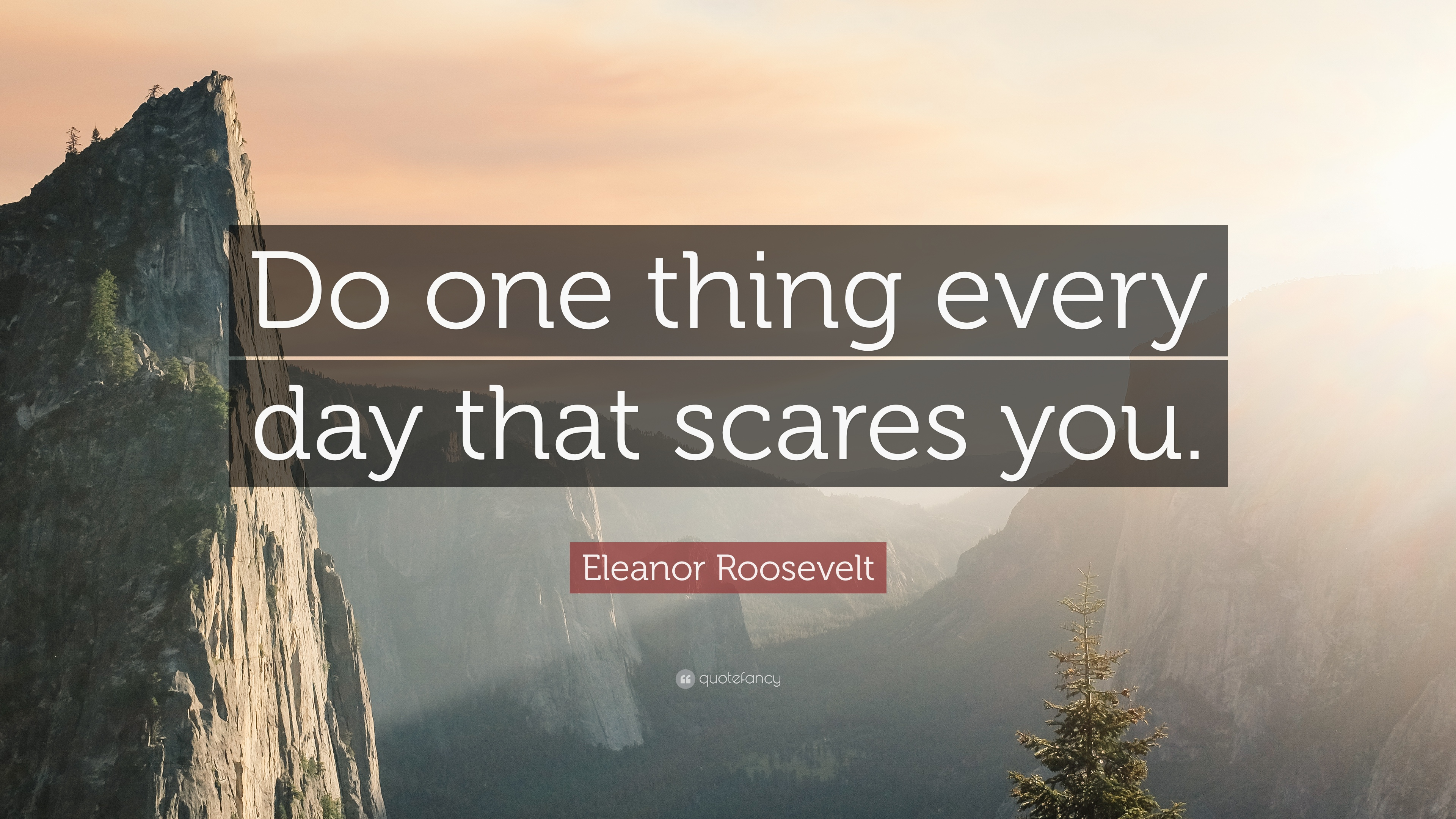 """Eleanor Roosevelt Quote: """"Be flexible, but stick to your ...  