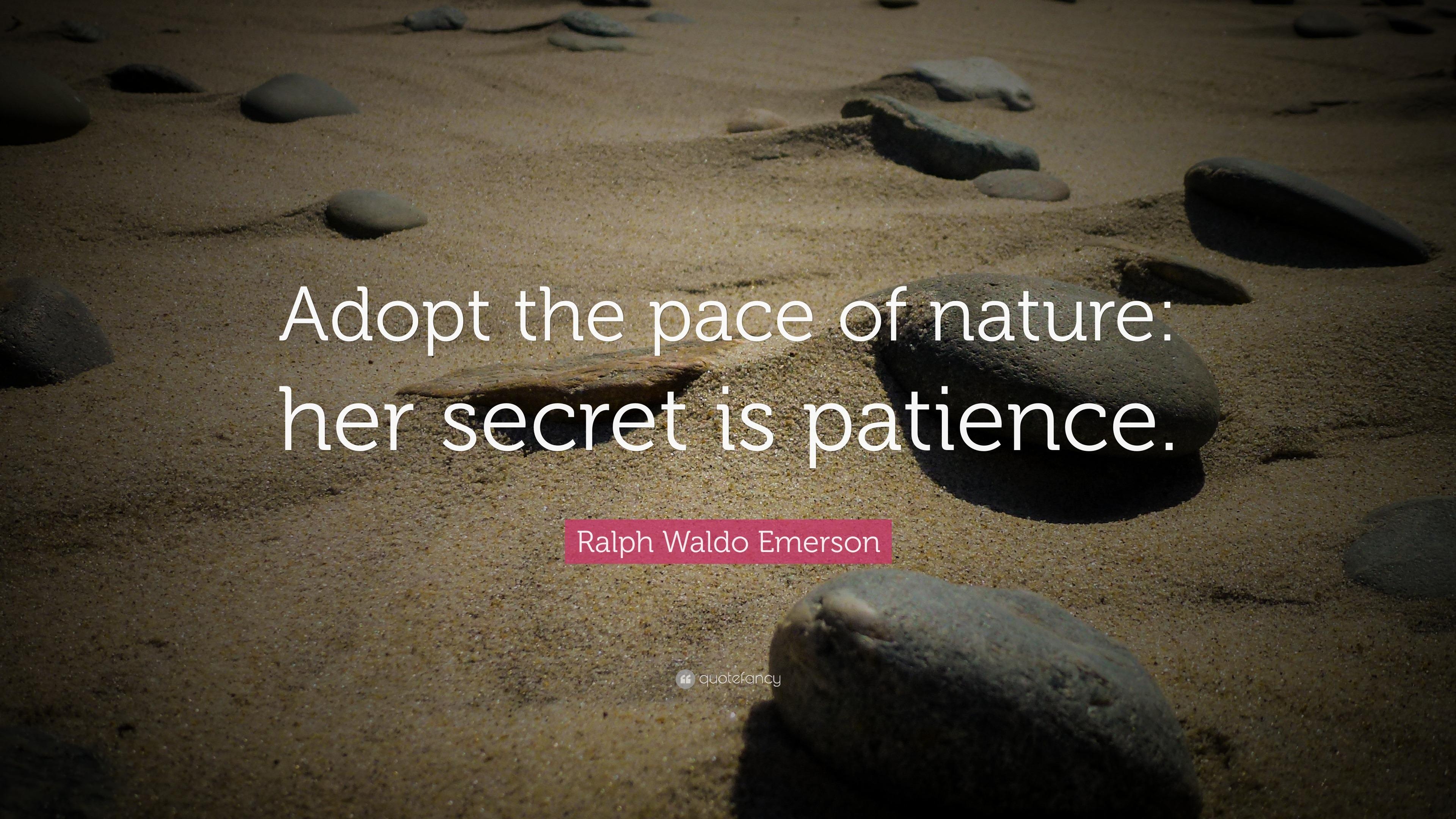 Nature essay by ralph waldo emerson