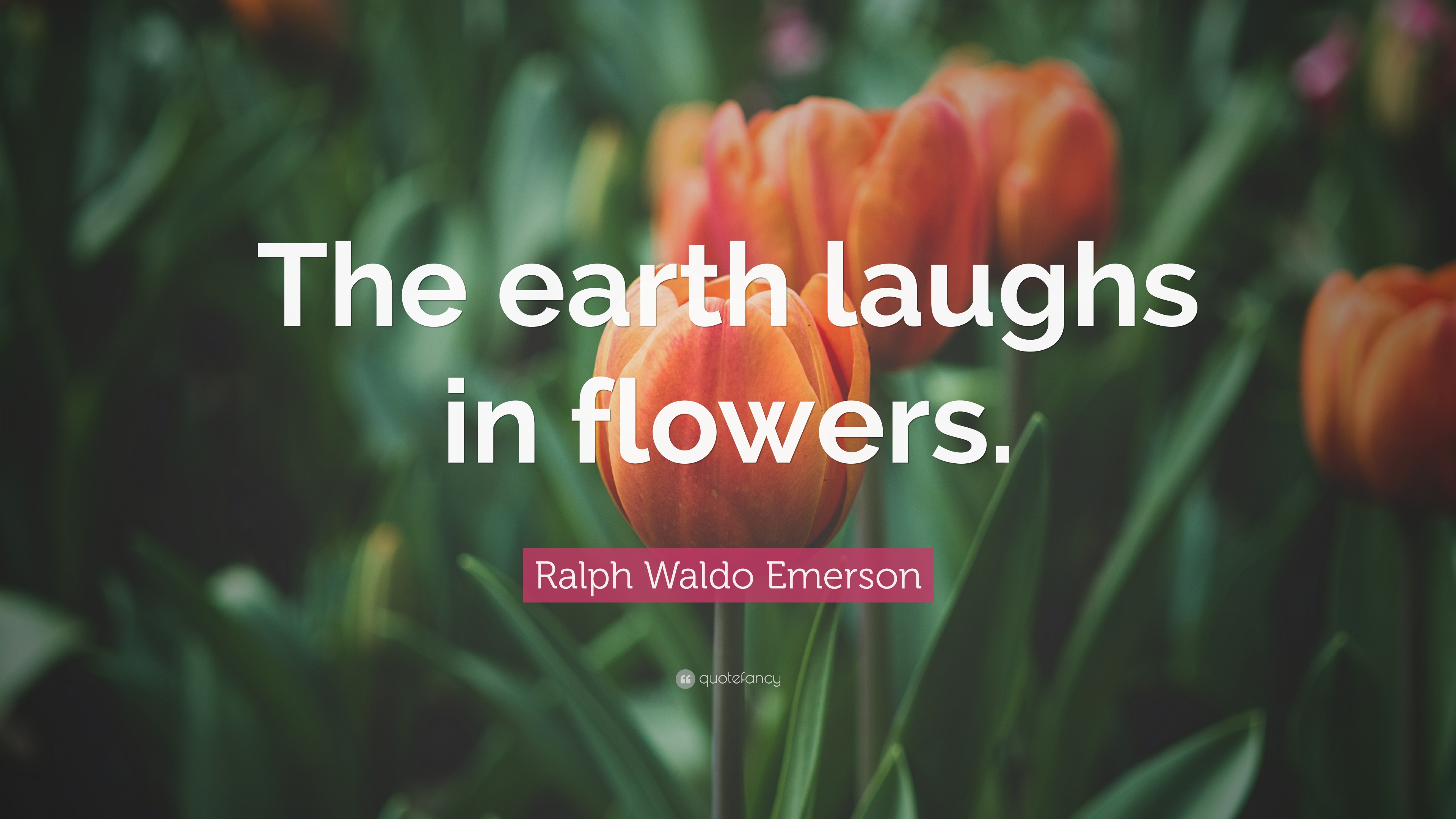 """Ralph Waldo Emerson Quote: """"The Earth Laughs In Flowers"""