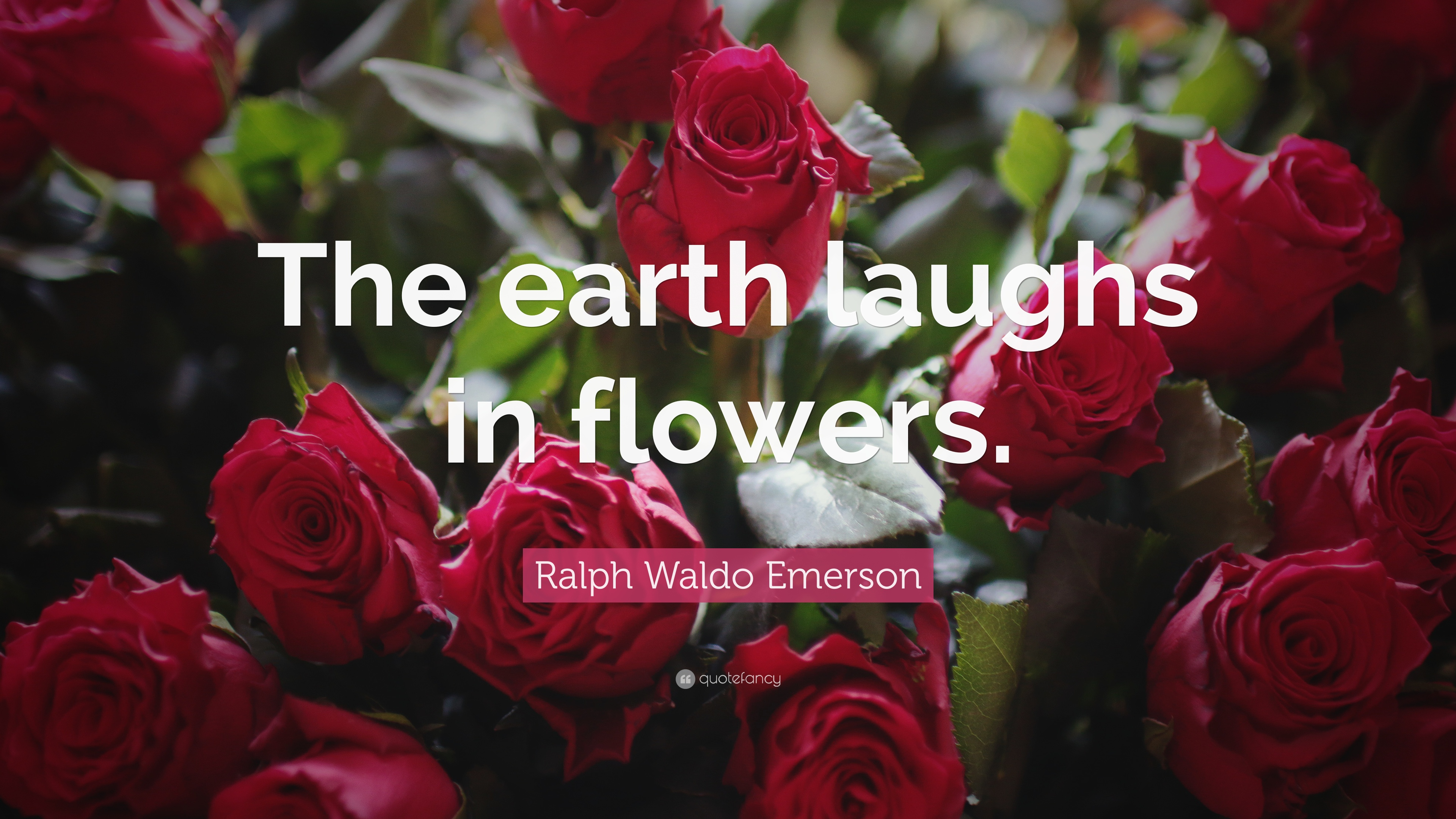 Ralph Waldo Emerson Quote The Earth Laughs In Flowers 22