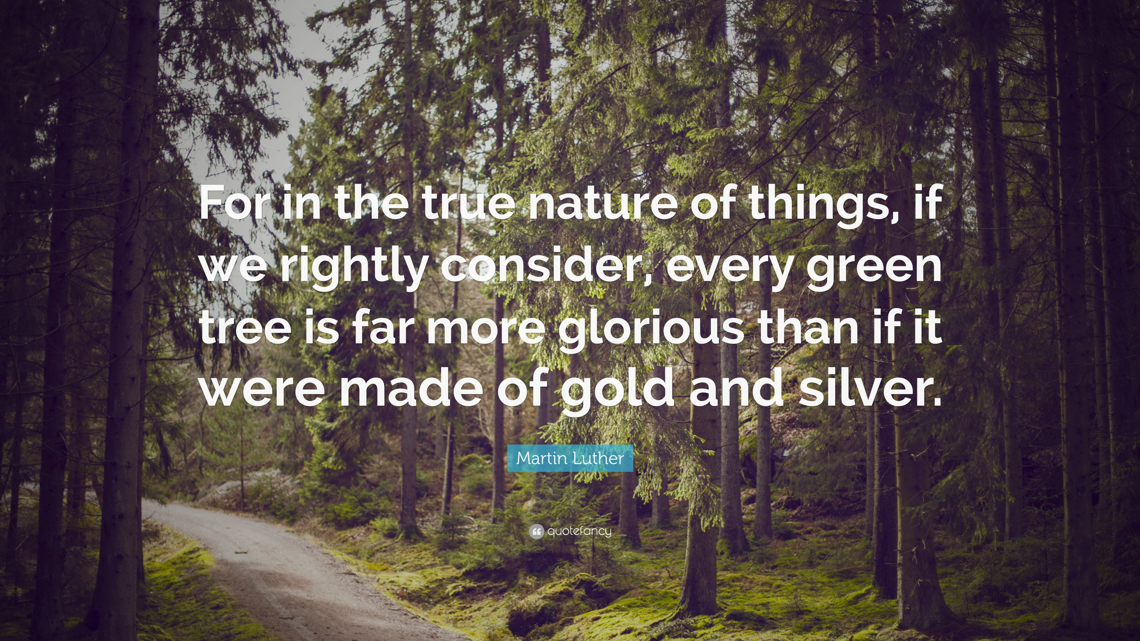 Quotes Nature Nature Quotes 32 Wallpapers  Quotefancy