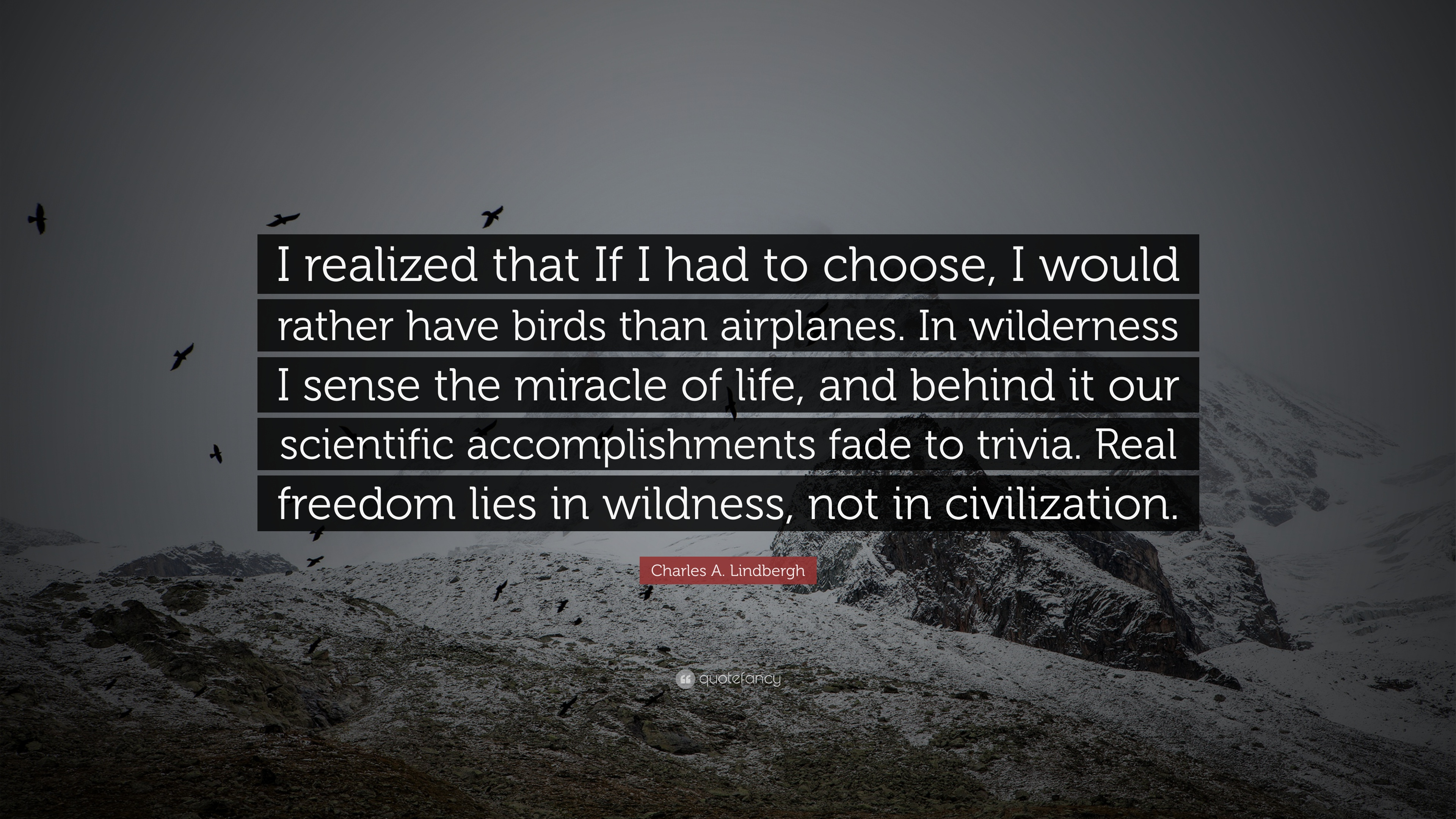 """Charles A. Lindbergh Quote: """"I Realized That If I Had To"""