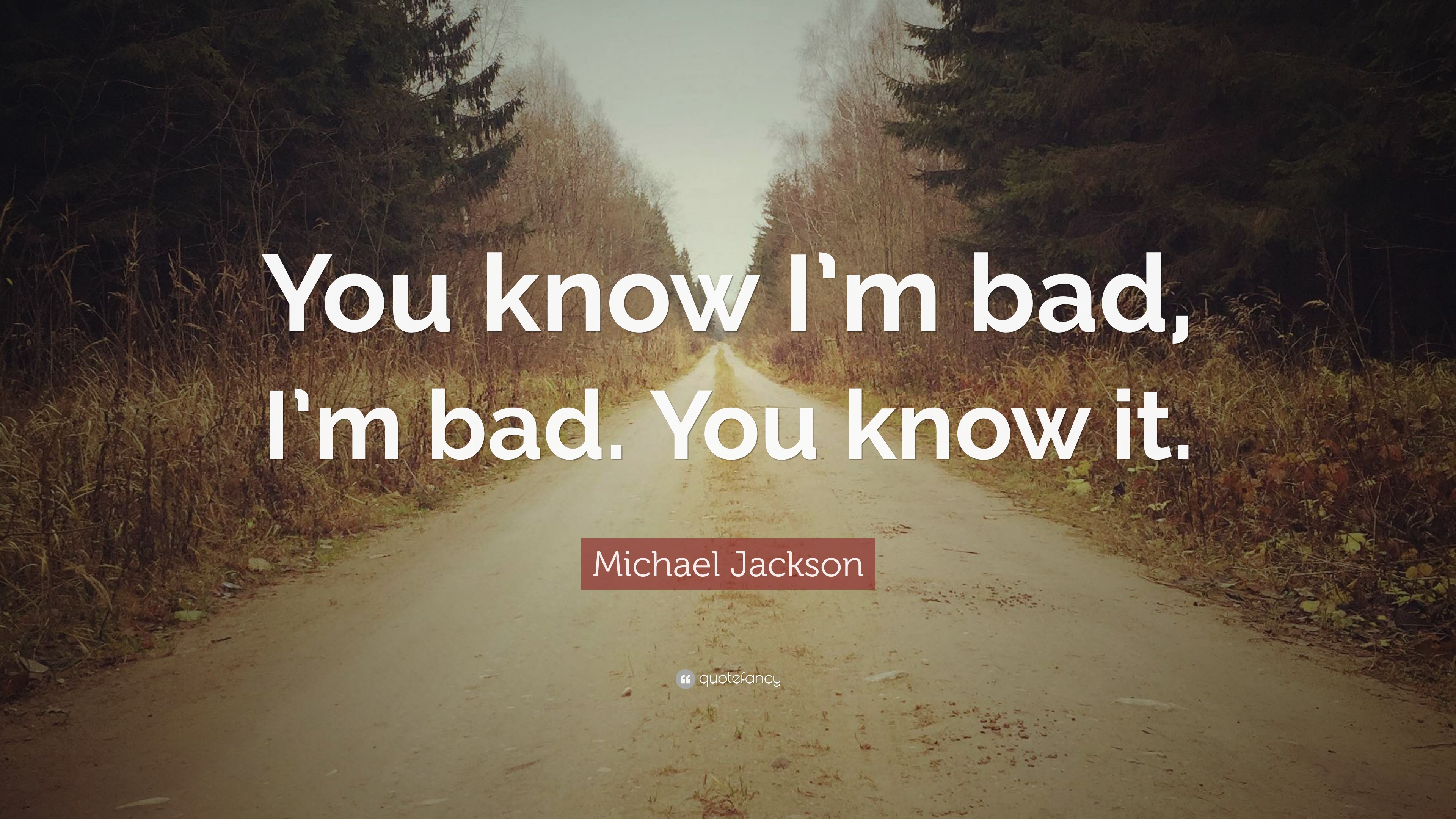 Michael Jackson Quote You Know Im Bad Im Bad You Know It 12