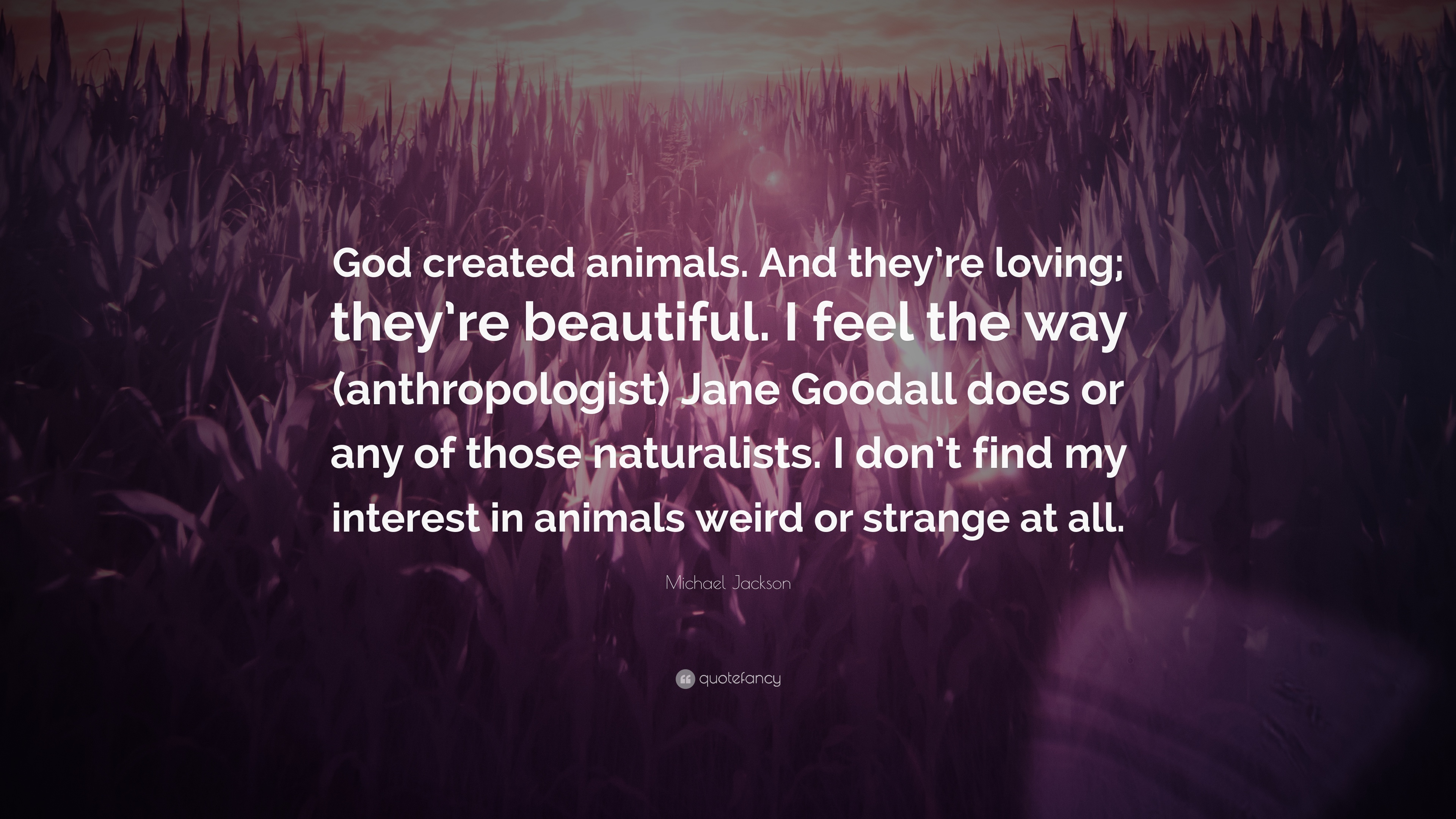 """Michael Jackson Quote: """"God Created Animals. And They're"""