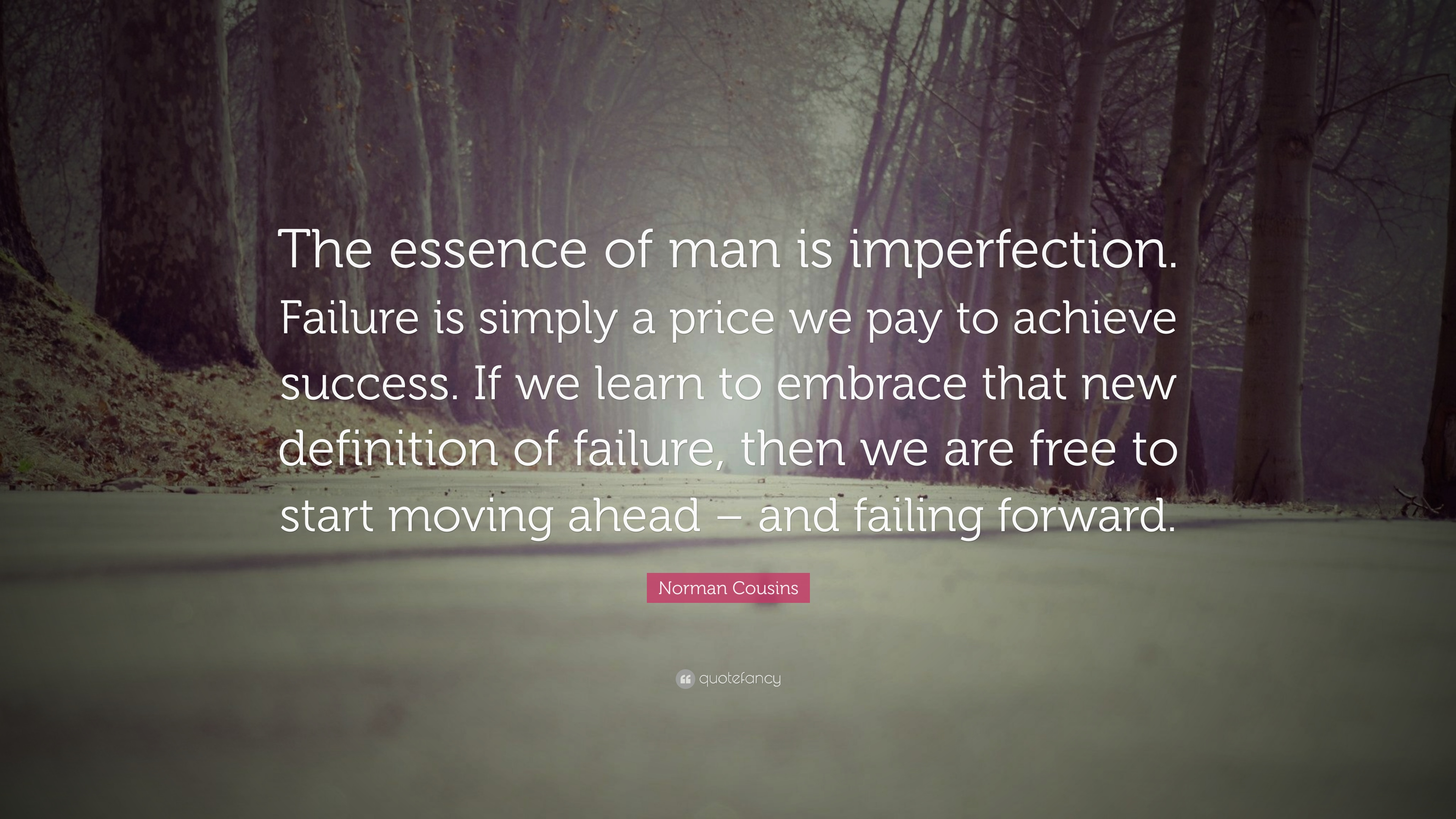 Norman Cousins Quote: U201cThe Essence Of Man Is Imperfection. Failure Is  Simply A