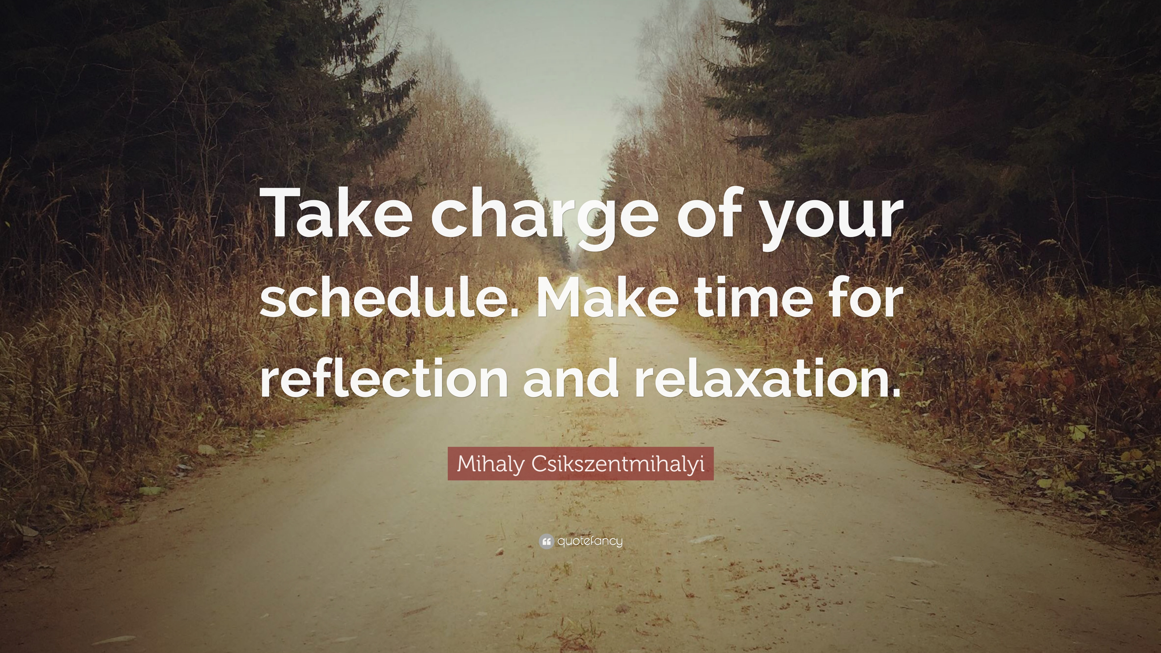 "Mihaly Csikszentmihalyi Quote: ""Take charge of your schedule. Make ..."