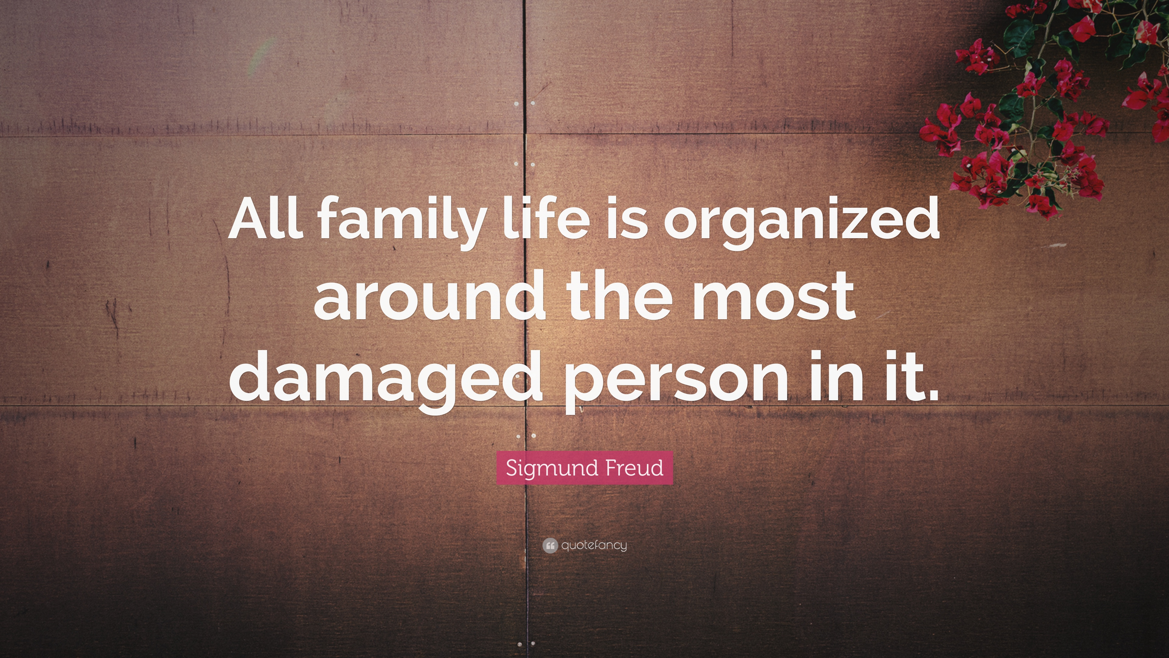Family Life Quotes Pleasing Family Quotes 40 Wallpapers  Quotefancy