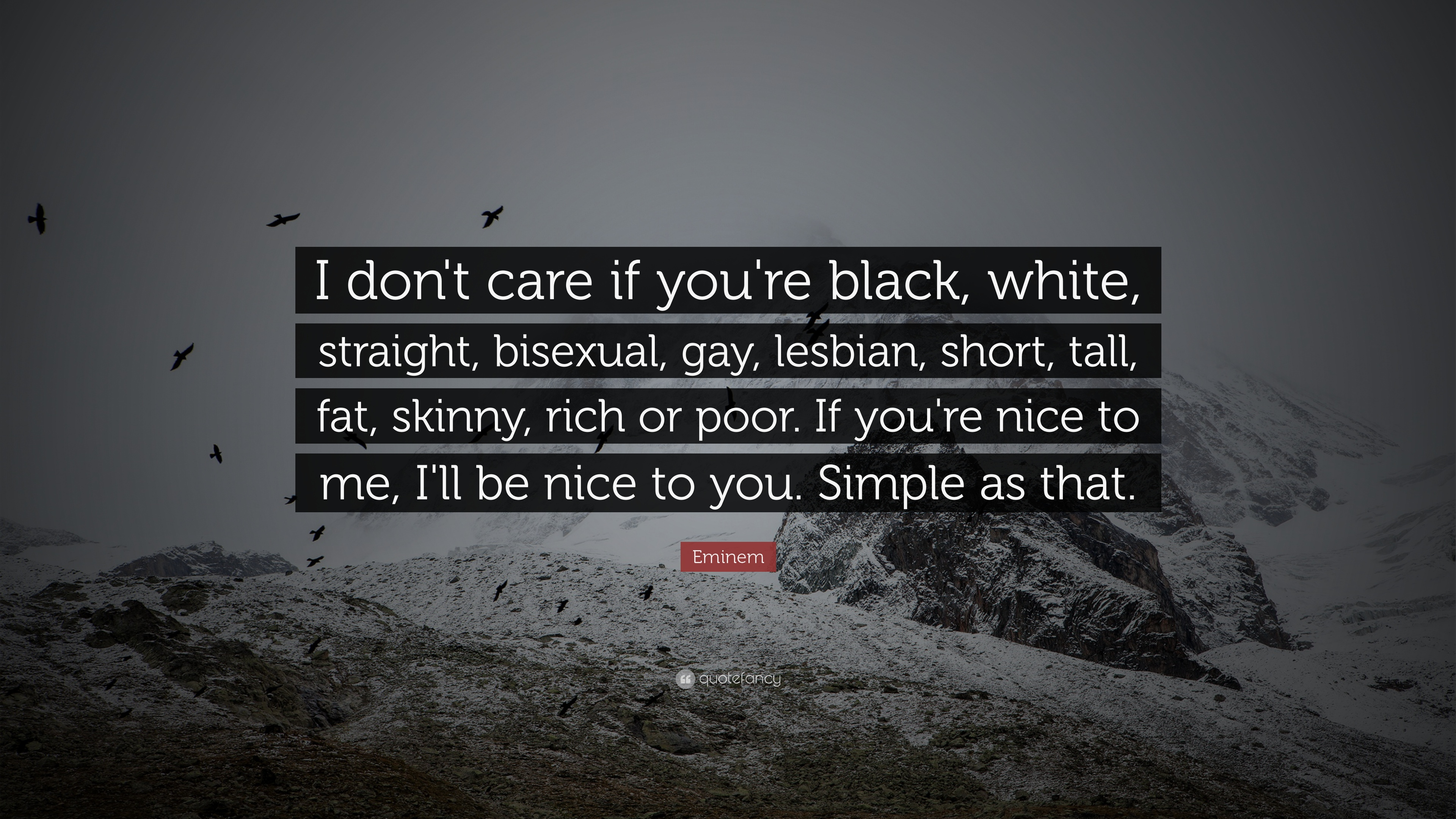 "Eminem Quote ""I don t care if you re black white"